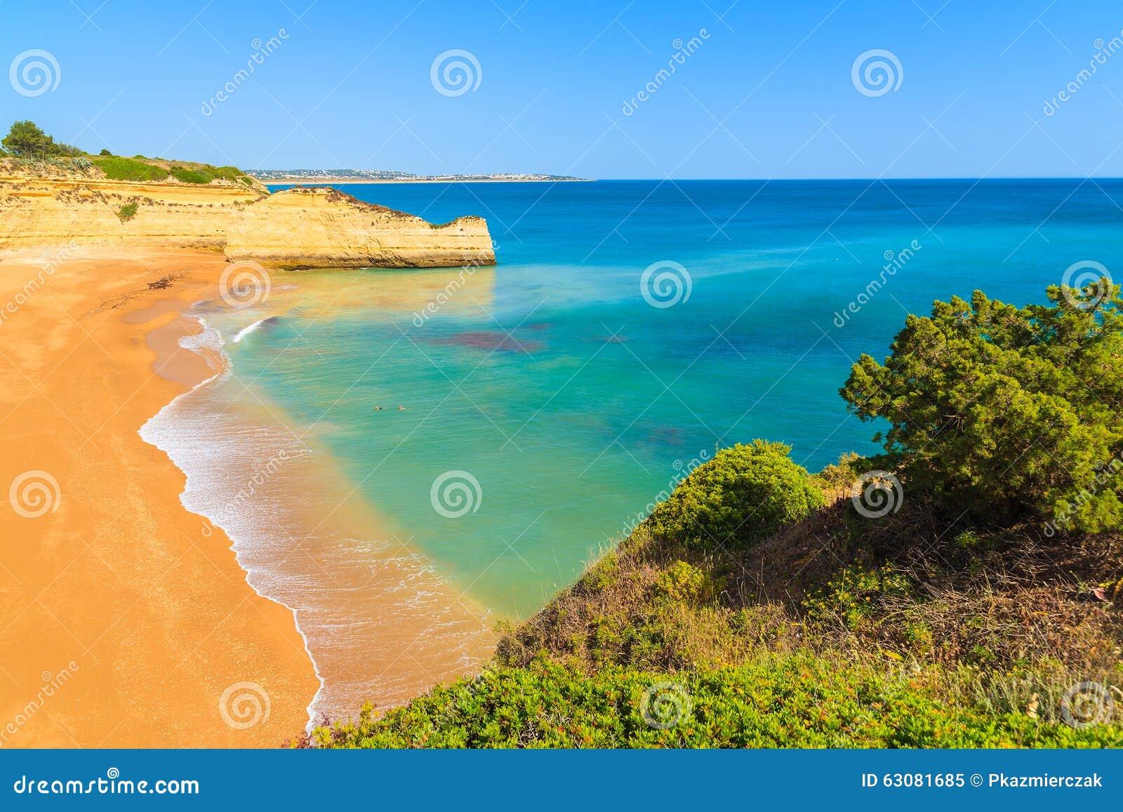 Download Vue De Belle Plage Sablonneuse Image stock - Image du rivage, littoral: 63081685