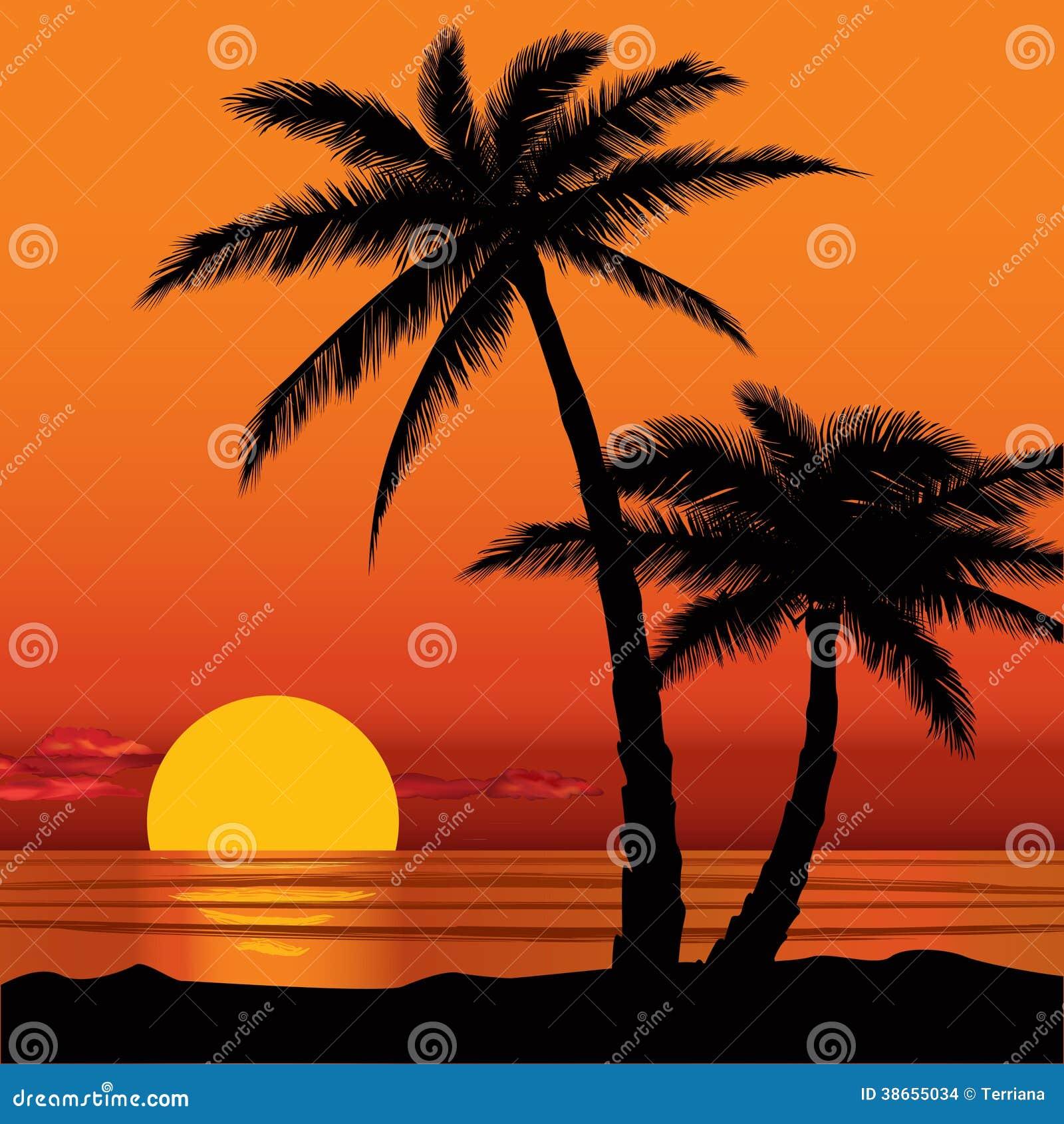 Beach road coconut girl 2