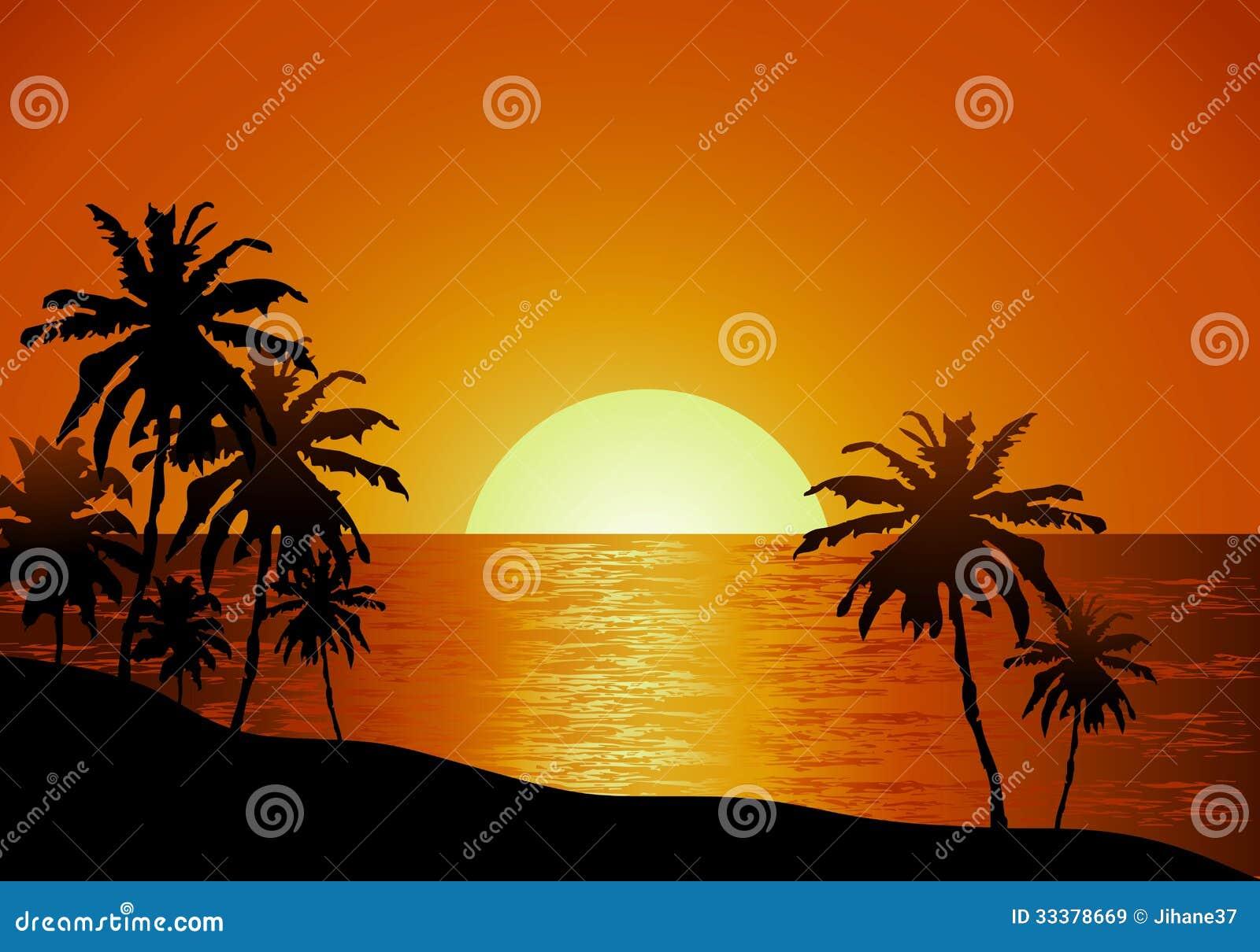 Vue de coucher du soleil en plage avec le palmier images - Coucher de soleil dessin ...