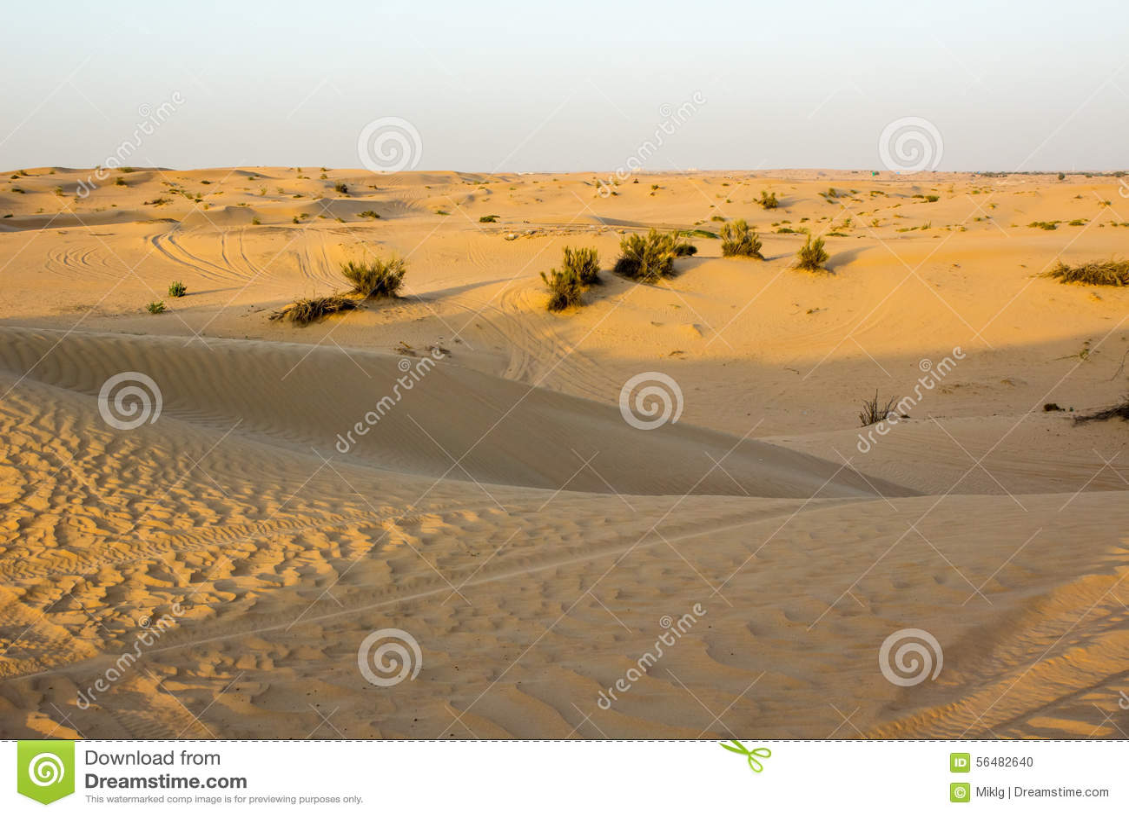 Vue de désert