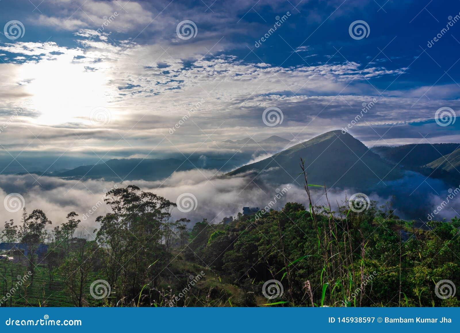 Vue de forêt avec de bas nuages de collines et ciel bleu