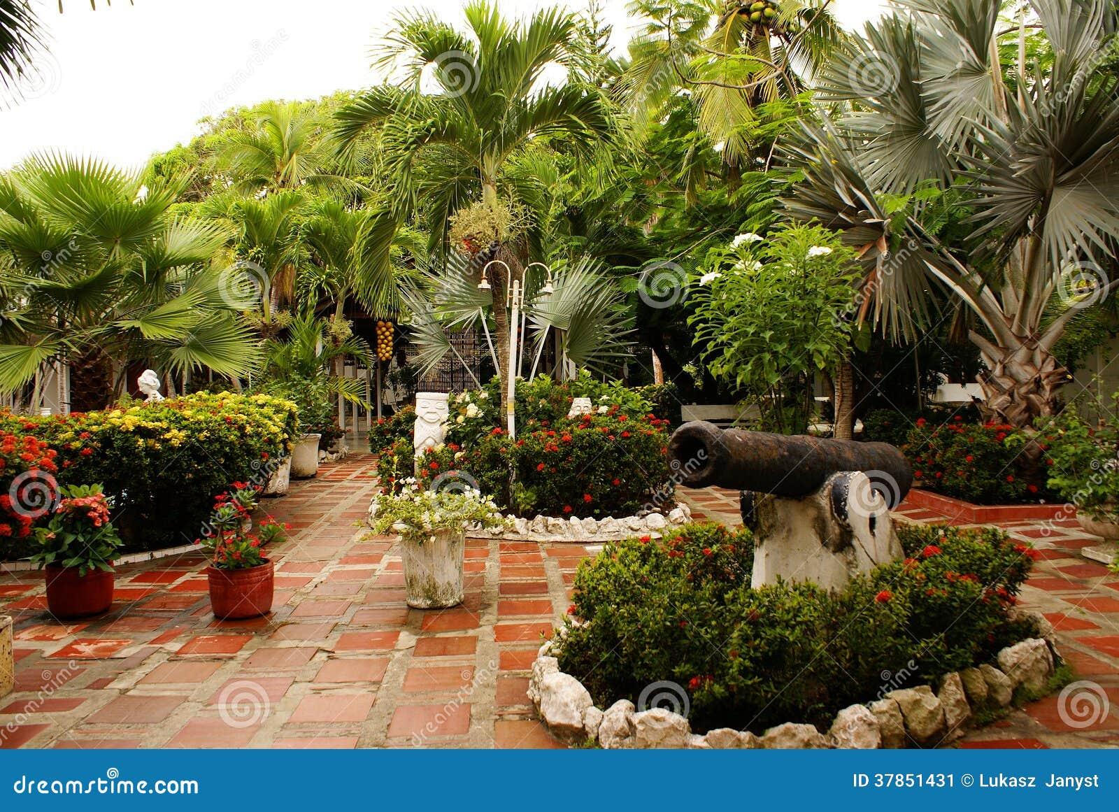 Vue de jardin avec des arbres patio dans la station for Arbres de jardin
