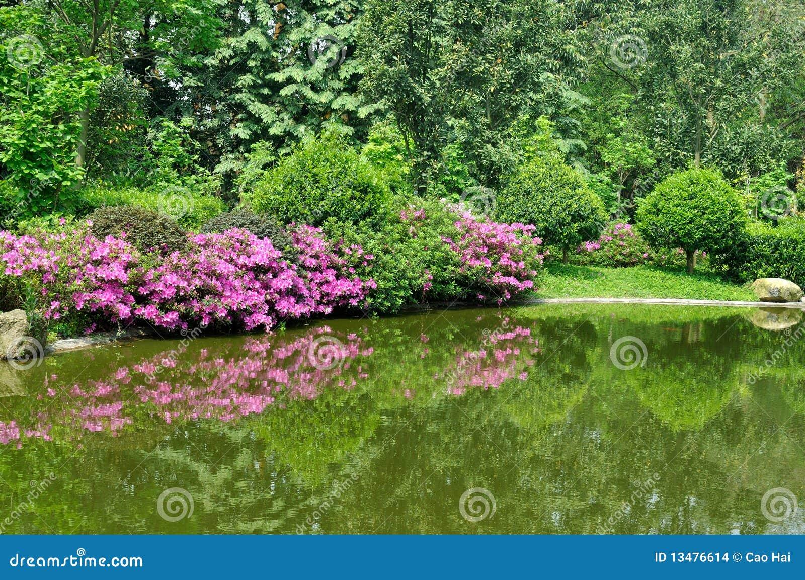 vue de jardin avec le lac et le rhododendra photo stock image du vert rouge 13476614. Black Bedroom Furniture Sets. Home Design Ideas