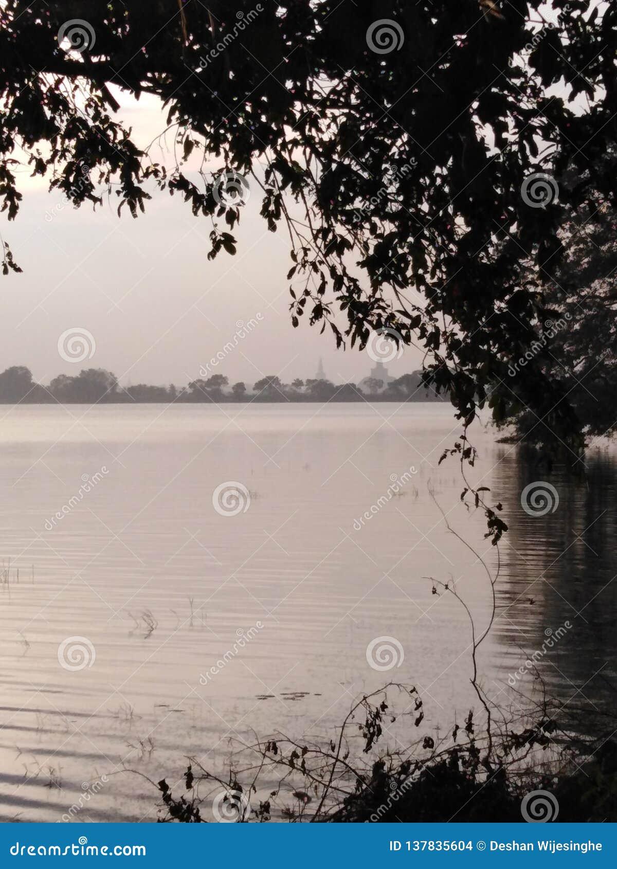 Vue de lac evening