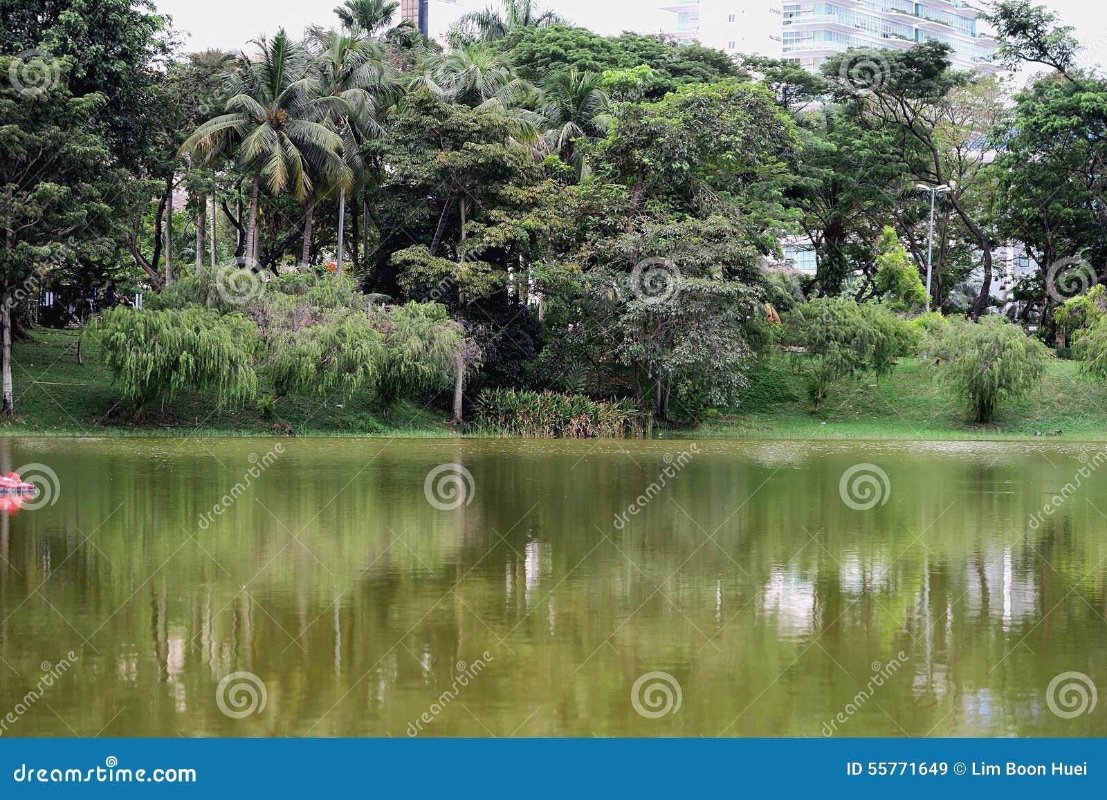 Vue de Lakeside le long d un parc récréationnel