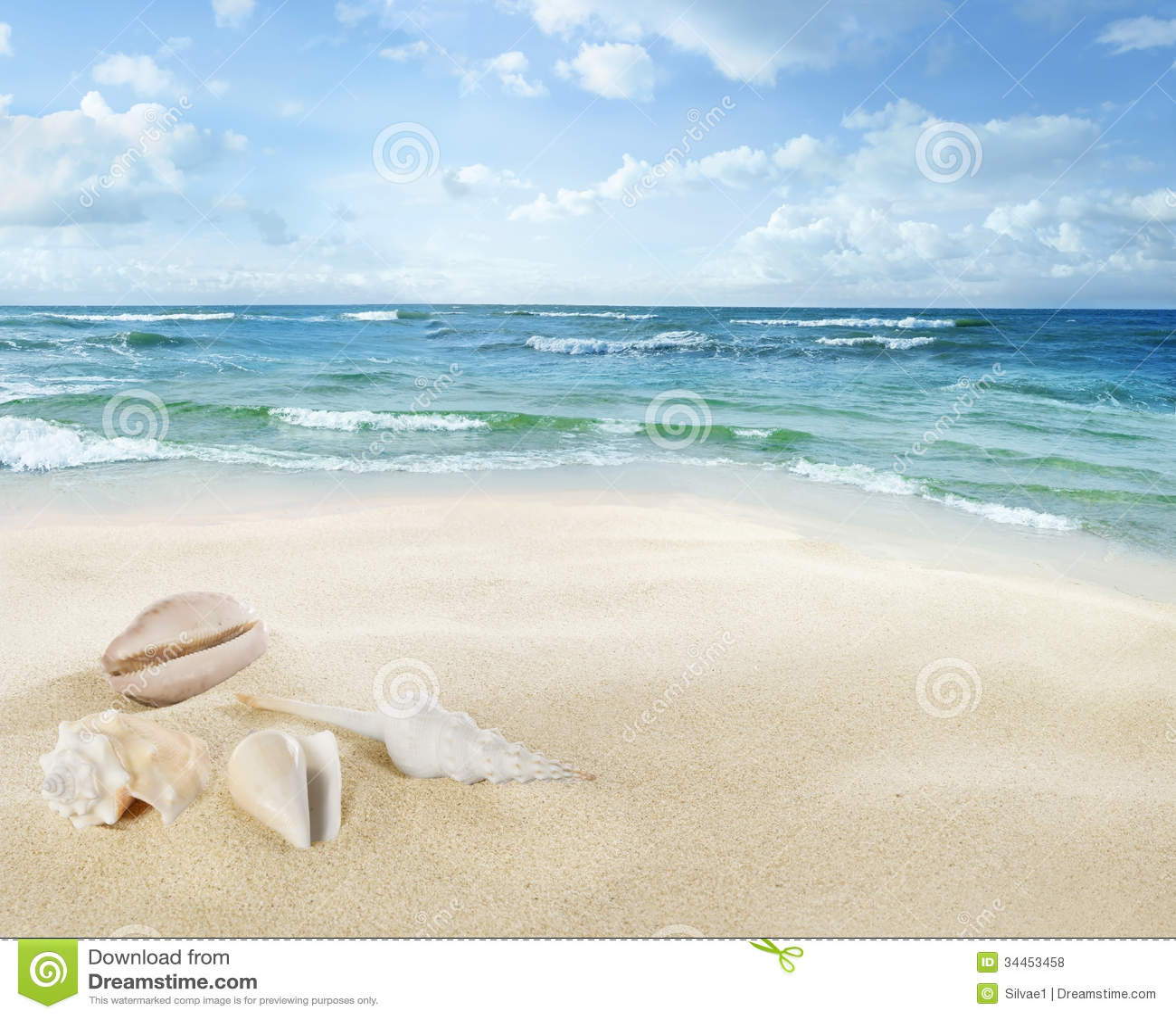 Vue de paysage marin