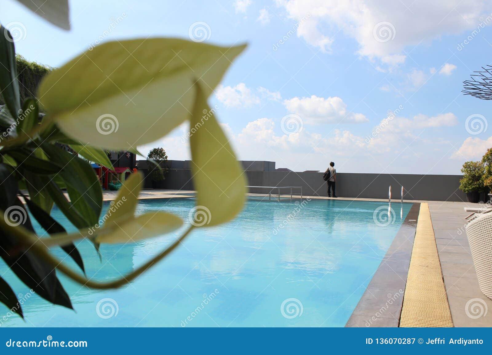 Vue de piscine sur le toit