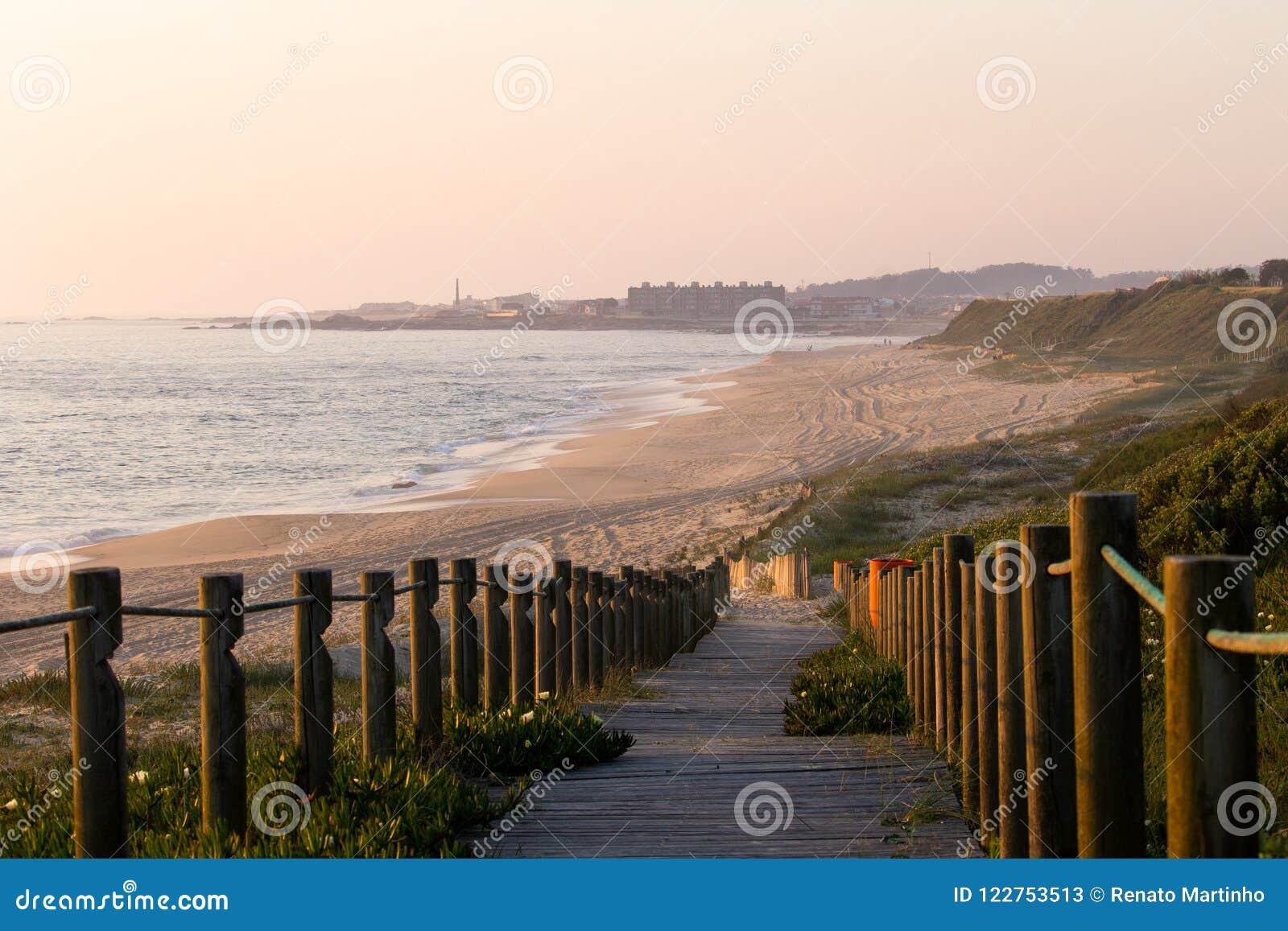 Vue de Shoreline