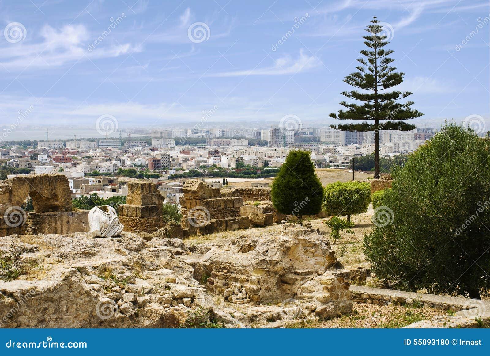 Vue de Tunis des bières de colline