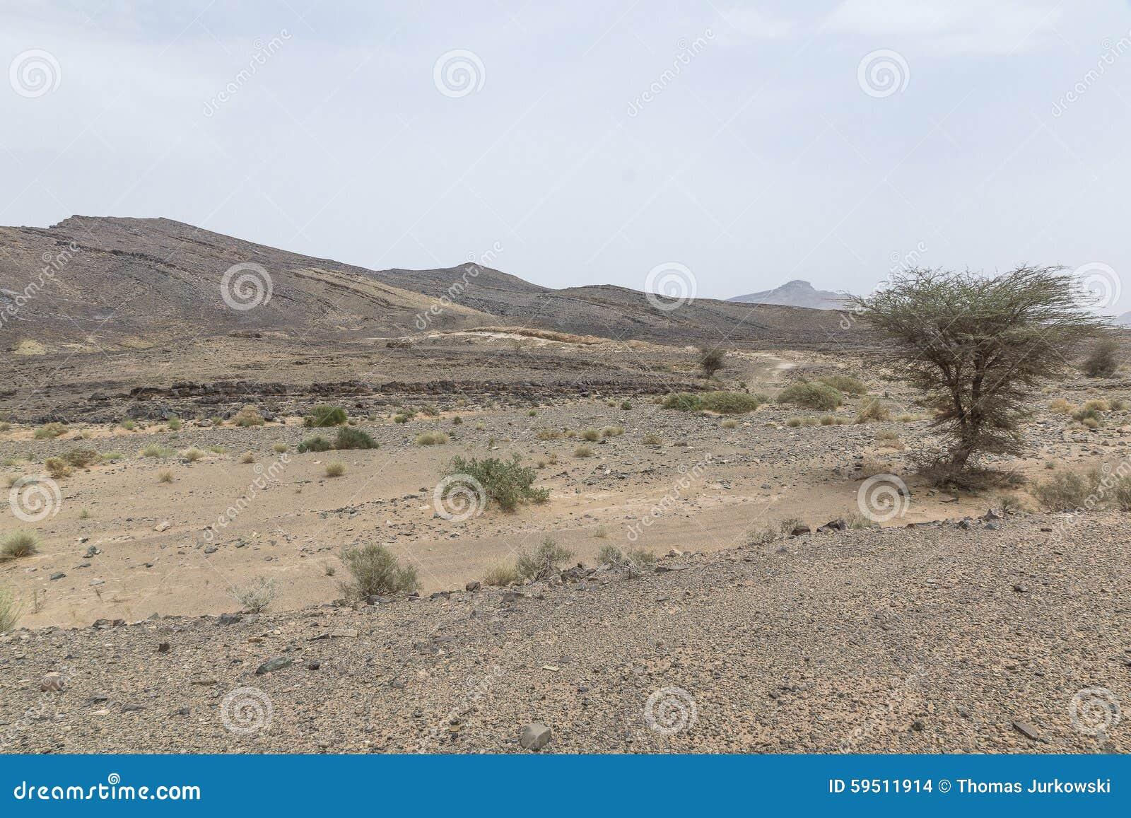 Vue des déserts et des montagnes