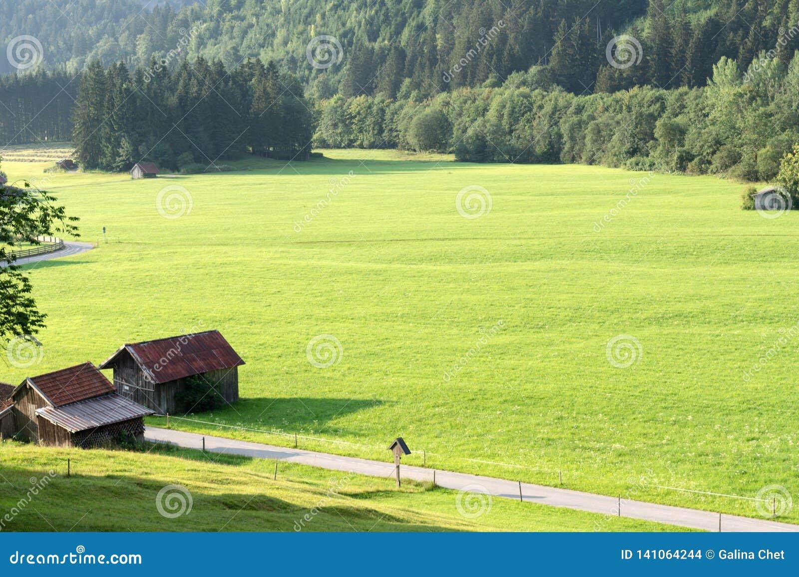 Vue des prés alpins bien-toilettés avec des annexes et de la route s étendant dans la distance
