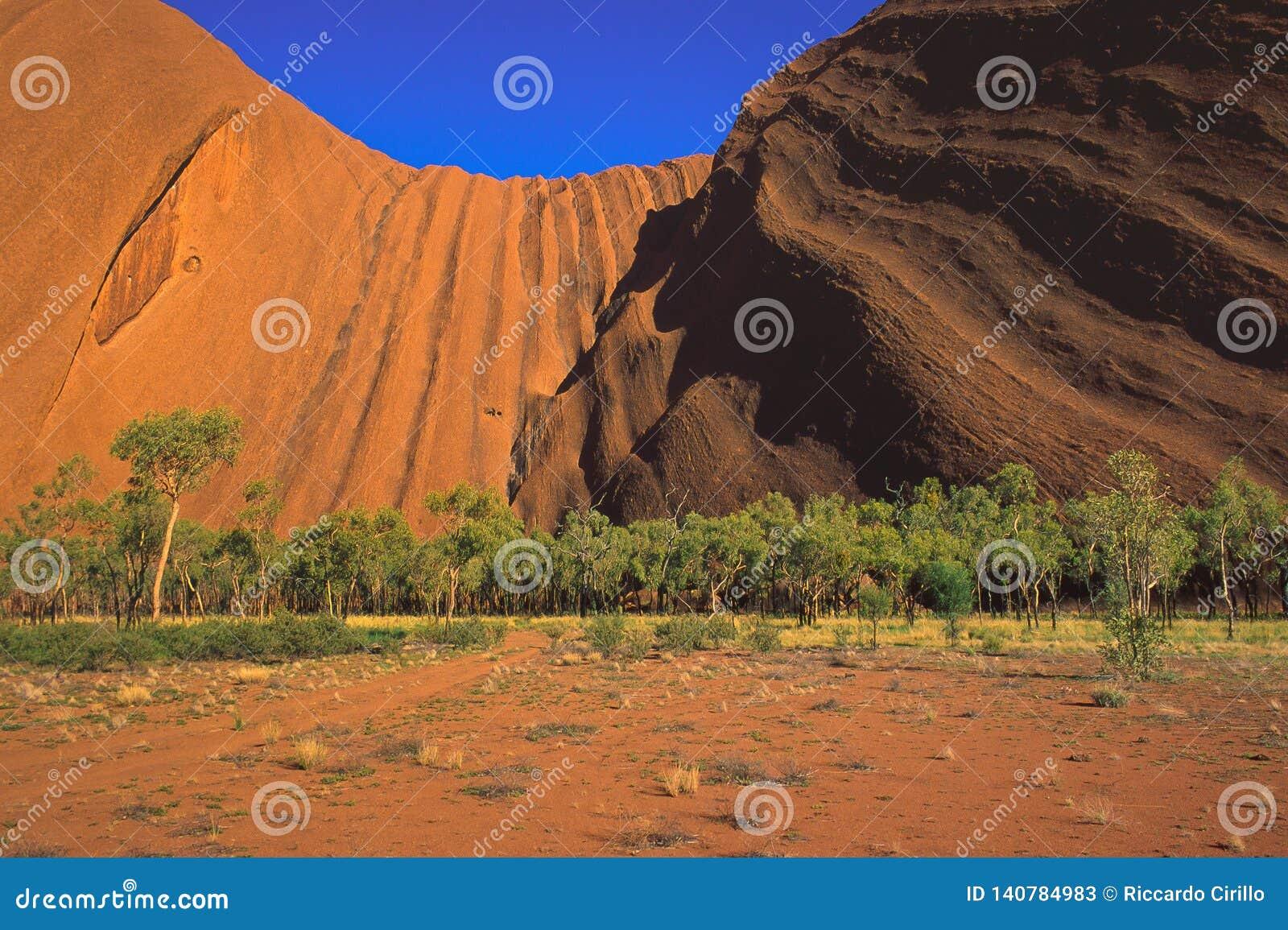 Vue du paysage montrant le côté du sud de la roche d Uluru Ayers, tôt le matin, parc national d Uluru-Kata Tjuta,
