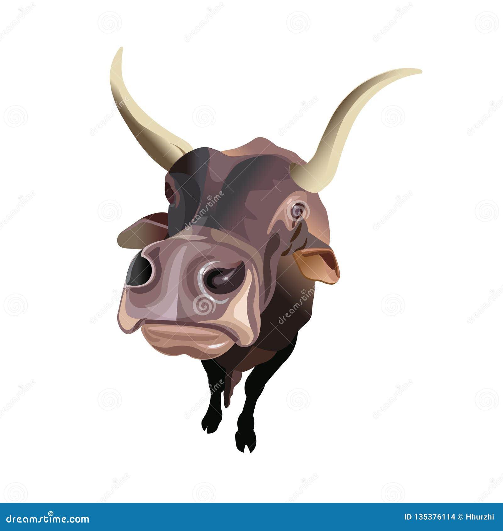 Vue grande-angulaire des bétail