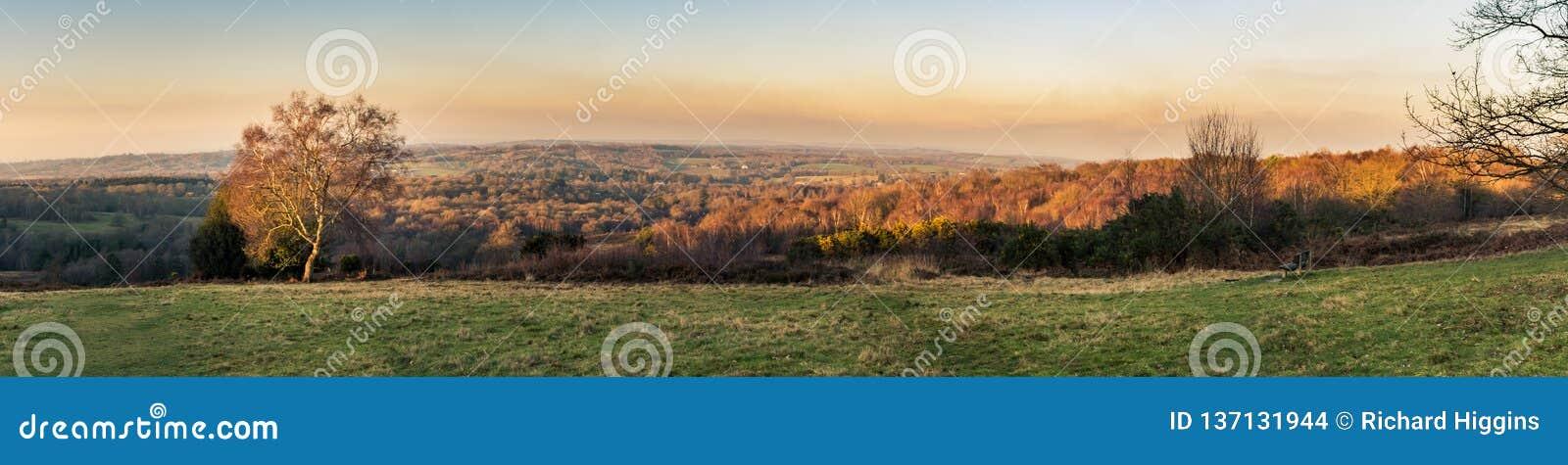Vue panoramique de coucher du soleil au-dessus de la forêt d Ashdown dans le Sussex, Angleterre, BRITANNIQUE une soirée en hiver,