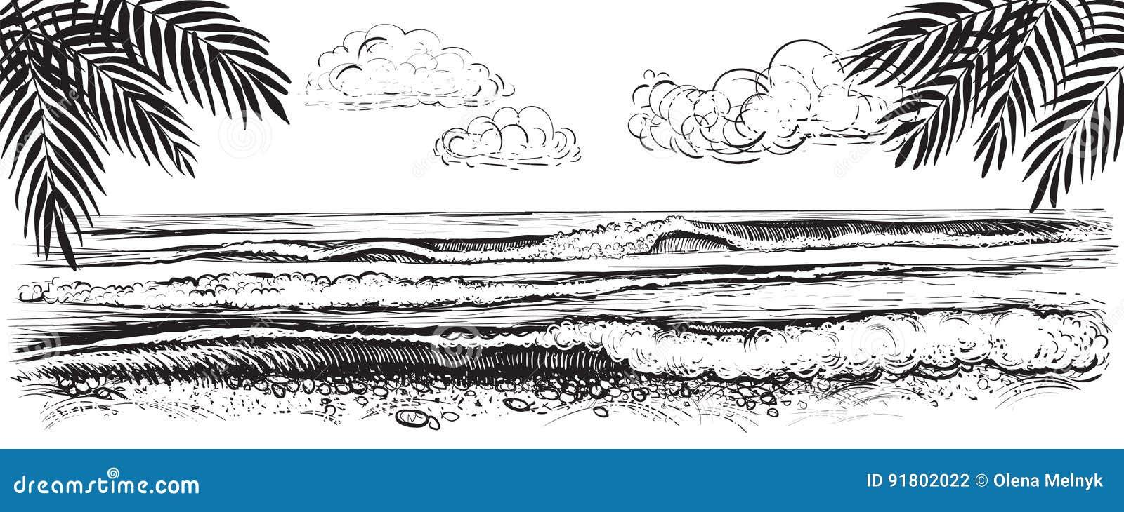 Vue panoramique de plage Illustration de vecteur des vagues d océan ou de mer Tiré par la main