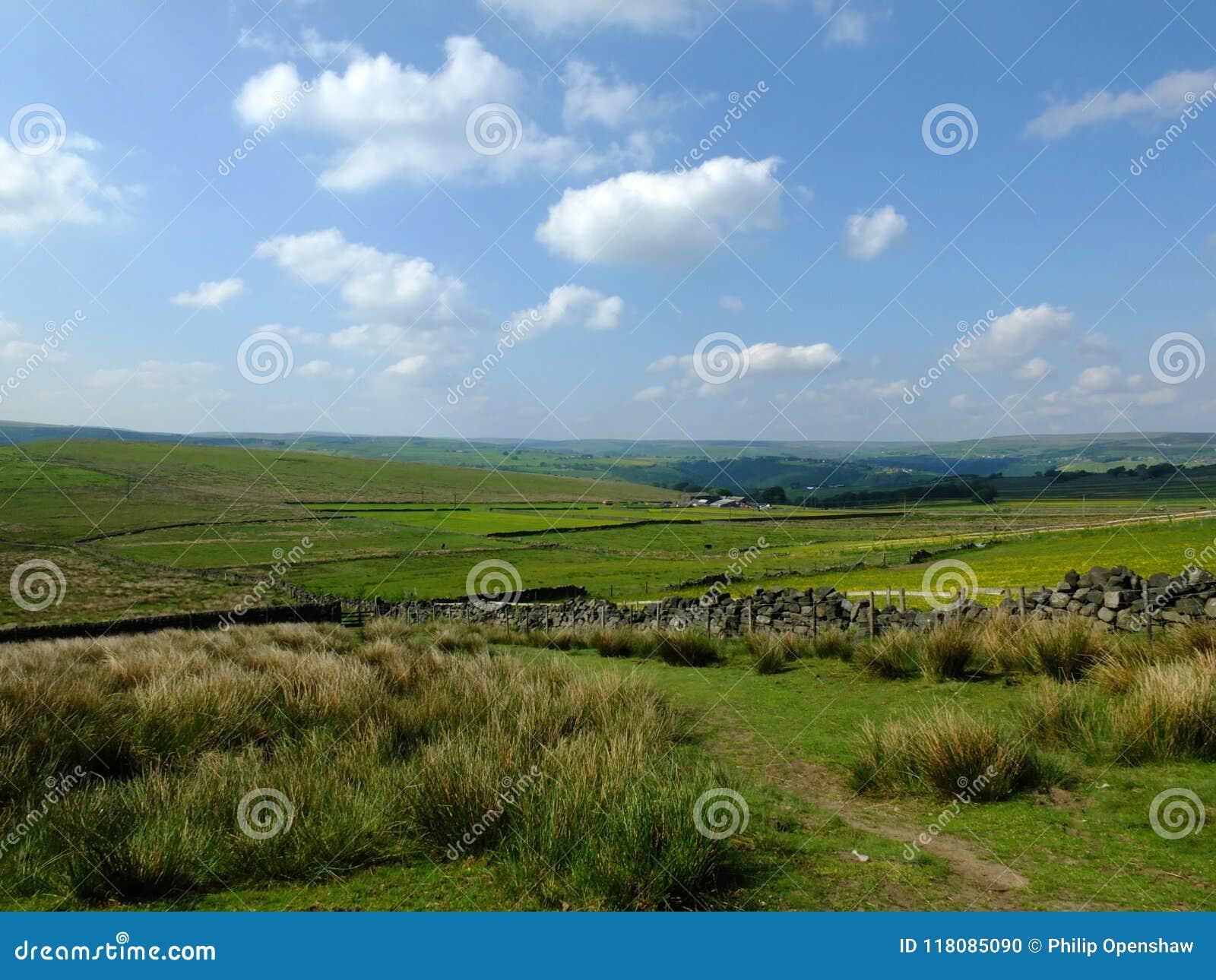 Vue scénique d un chemin au bord de bruyère dans le calderdale West Yorkshire avec l herbe rugueuse de touffe avec les murs de pi
