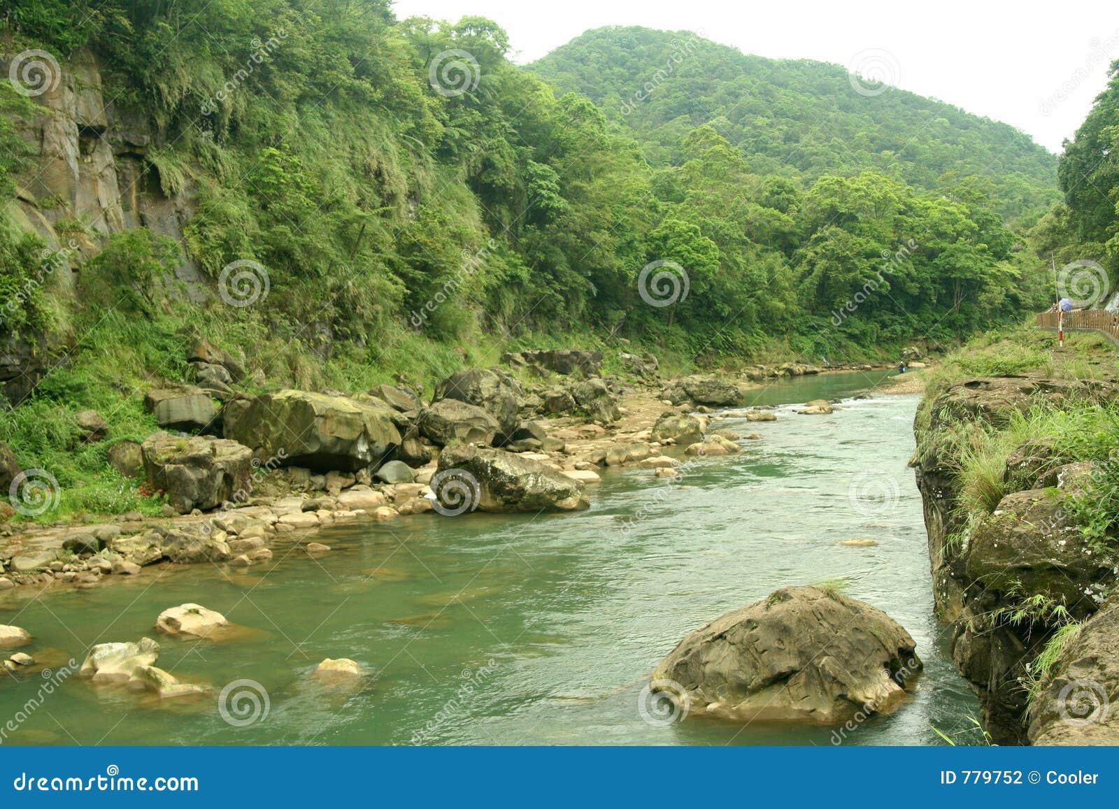 Vue scénique de fleuve de gorge