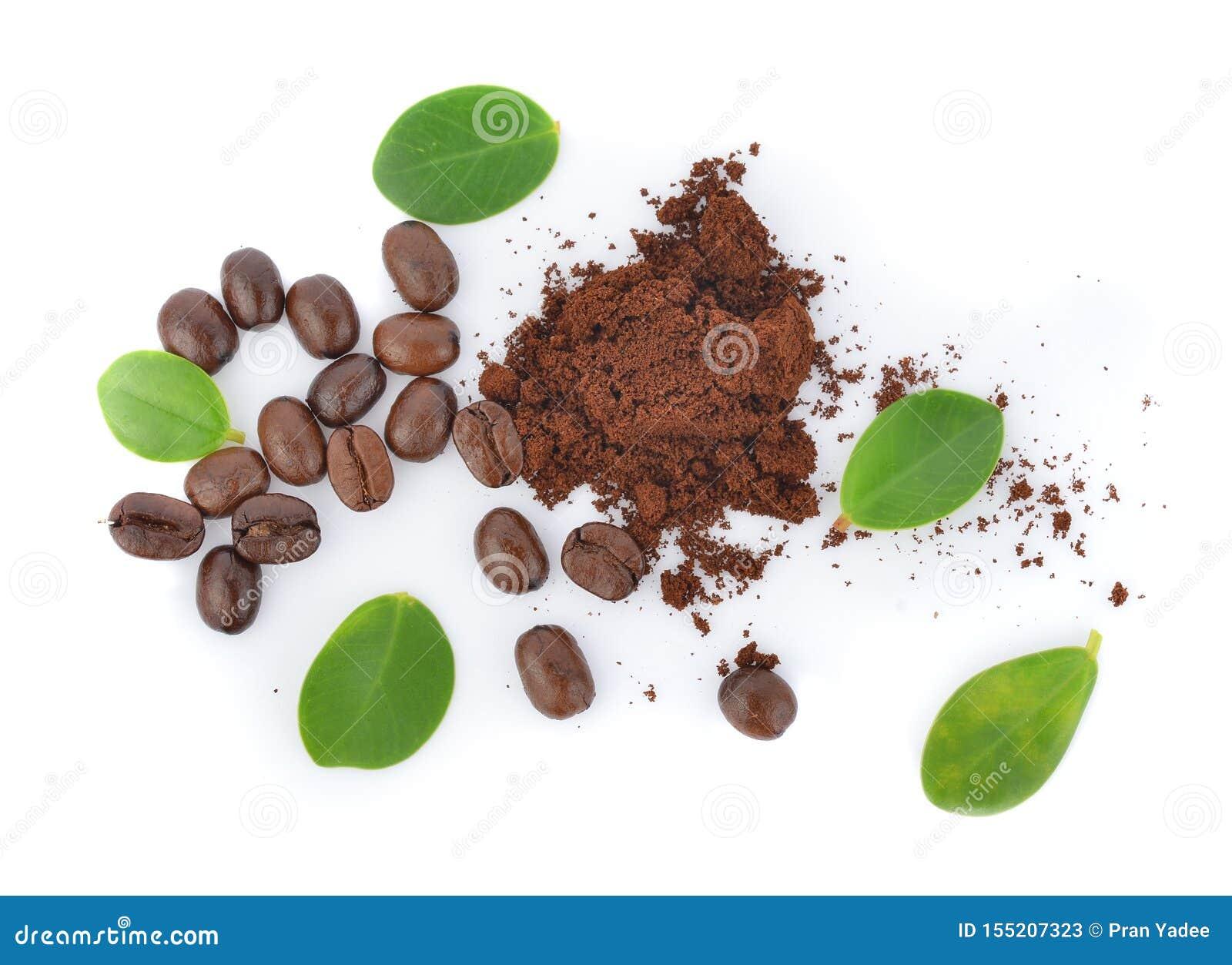 Vue supérieure des grains de café avec la feuille verte sur le fond blanc