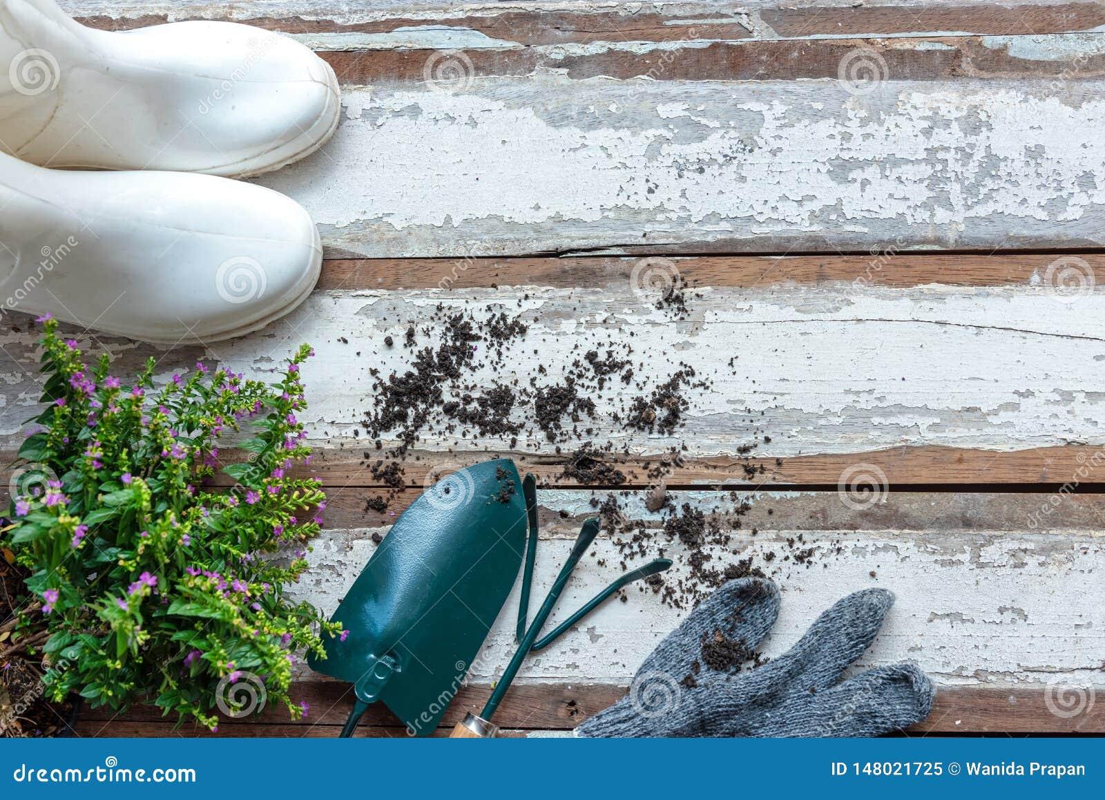 Vue sup?rieure sur faire du jardinage une pelle remplie d outil mis en pot de sol et de fleurs pendant le printemps d ?t? de jard