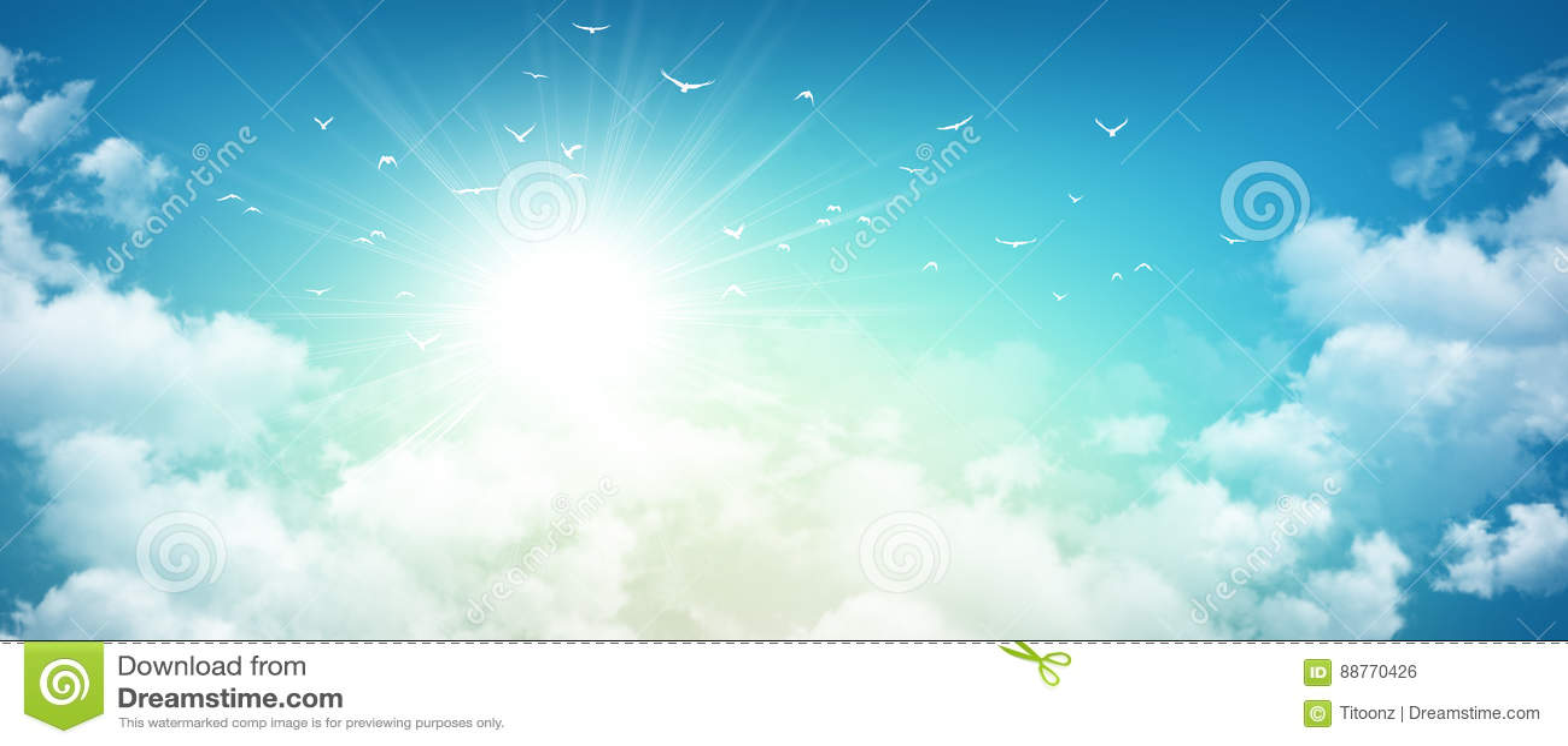 Vuelo de los pájaros en sol naciente