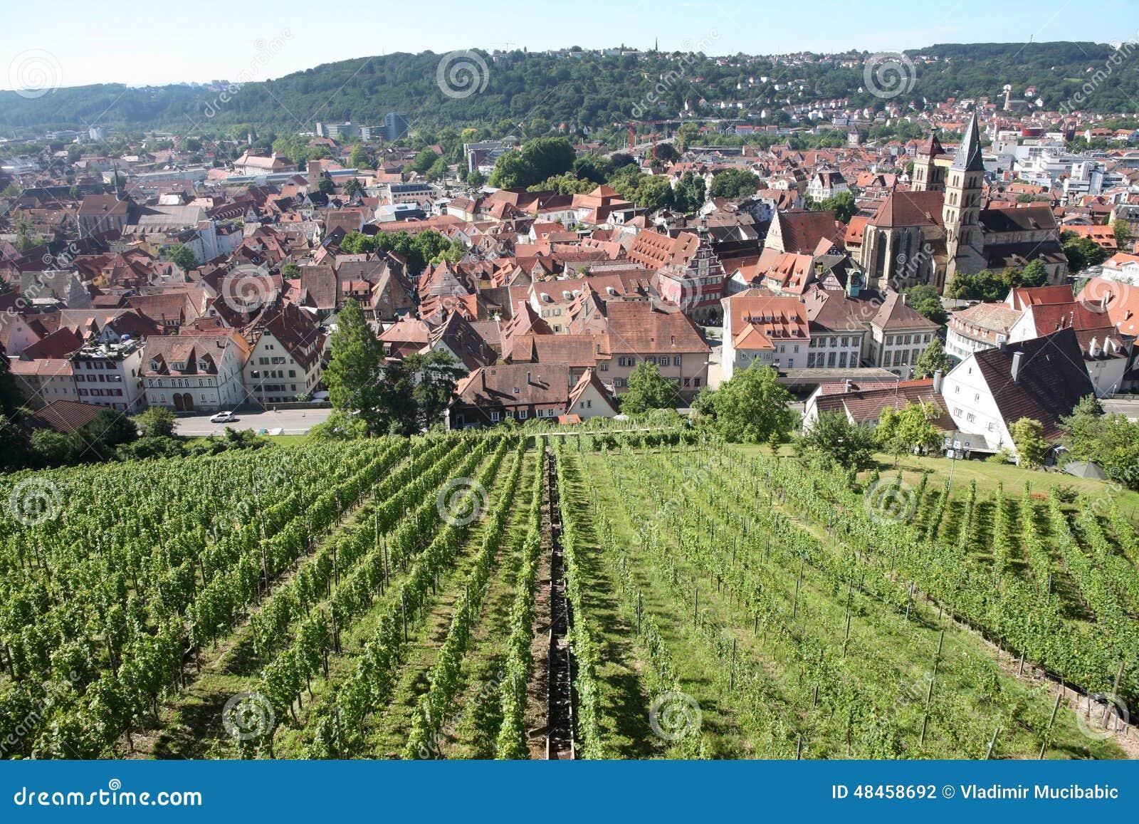 Vues d Esslingen AM le Neckar de Burg de château près de Stuttgart, Baden
