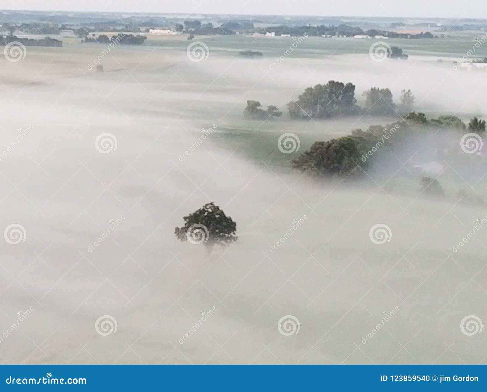Vues de brouillard