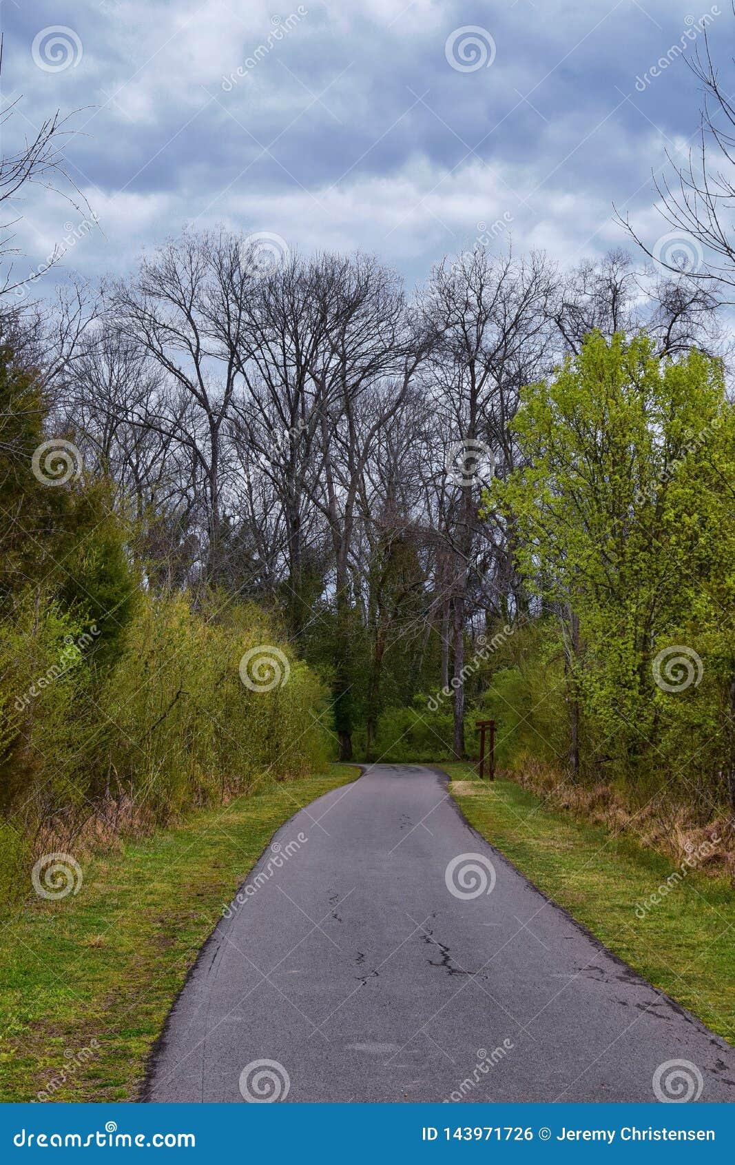 Vues de nature et de voies le long de Shelby Bottoms Greenway et des traînées naturelles de façade de la rivière Cumberland de se