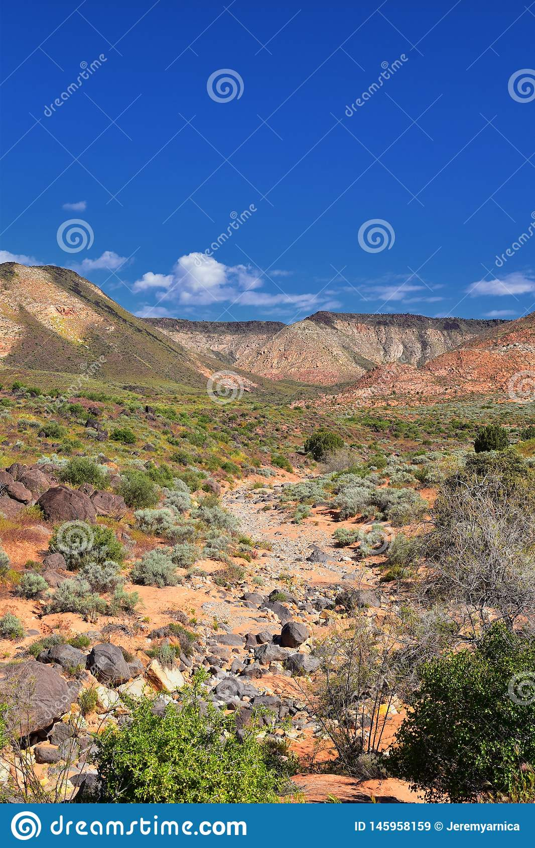 Vues de r?gion sauvage de montagne et de parc d ?tat rouges de canyon de neige de la tra?n?e et du Washington Hollow de Millcreek
