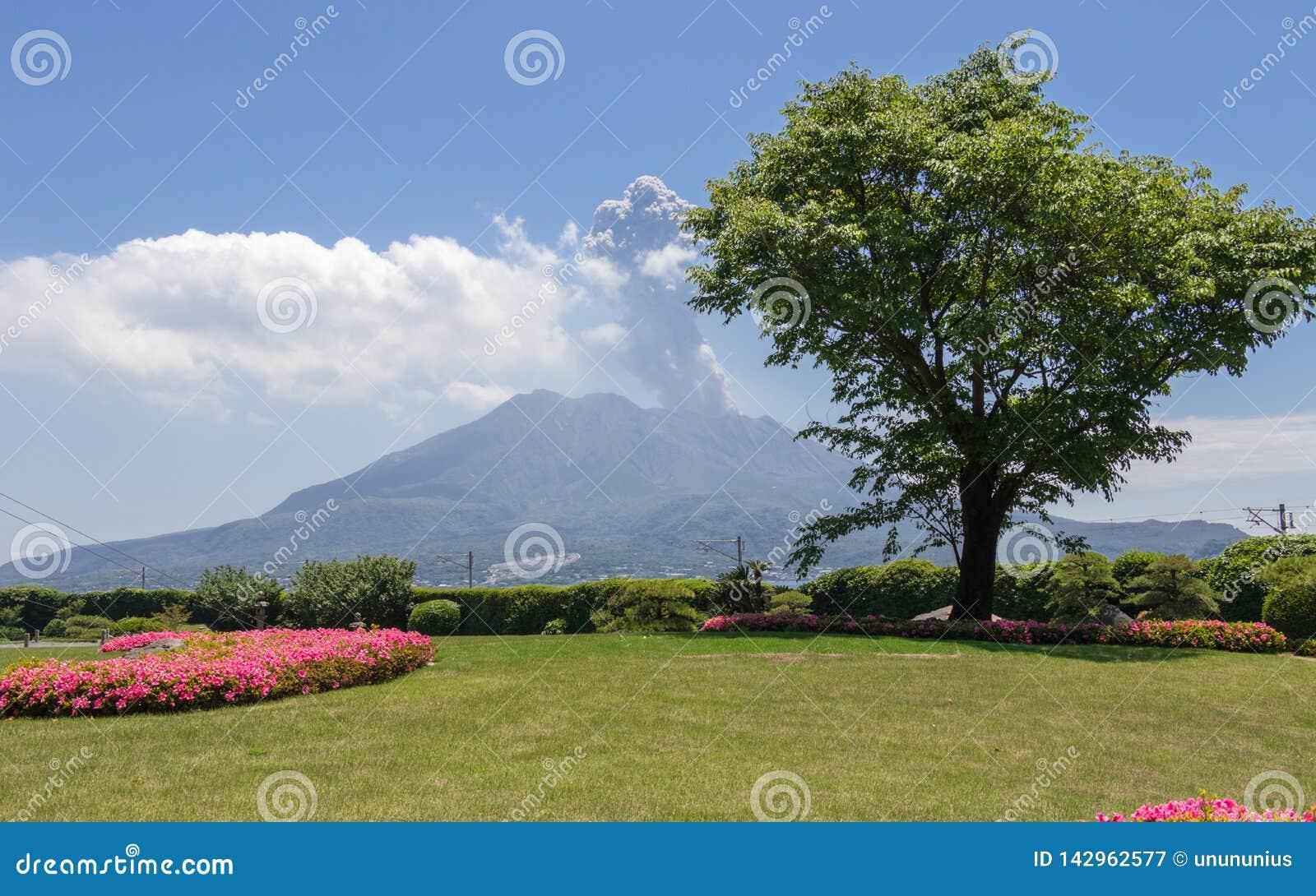 Vulcan ativo Sakurajima coberto pela paisagem verde Tomado do jardim Sengan-en maravilhoso Localizado em Kagoshima, Kyushu,
