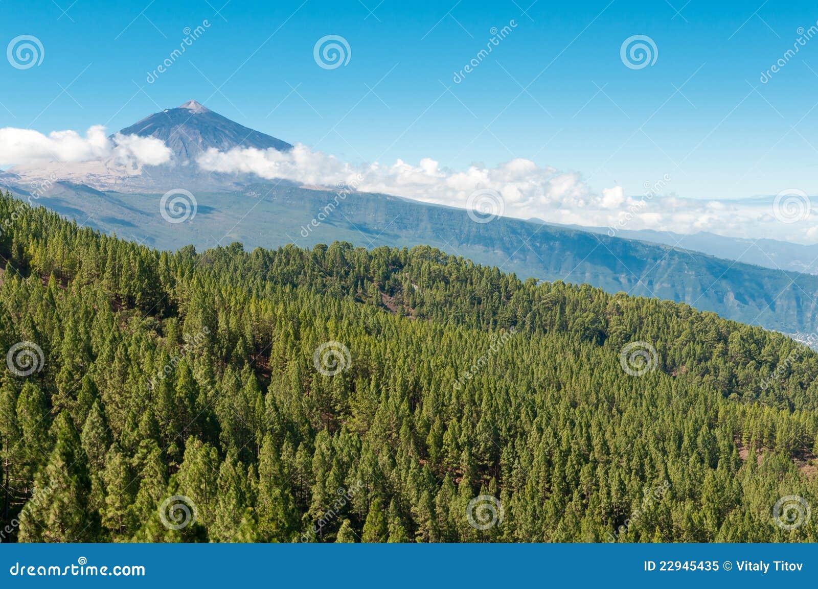 Vulkan El Teide Tenerife Spanien Stockbild Bild Von Reise Kante