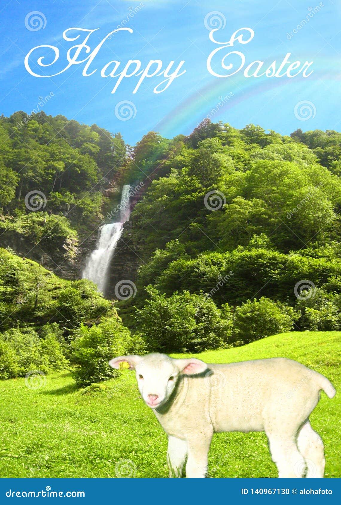 Vykort med en solig vattennedgång på en ljus sommardag med ett sött lamm och en härlig collage för blå himmel med lycklig easter