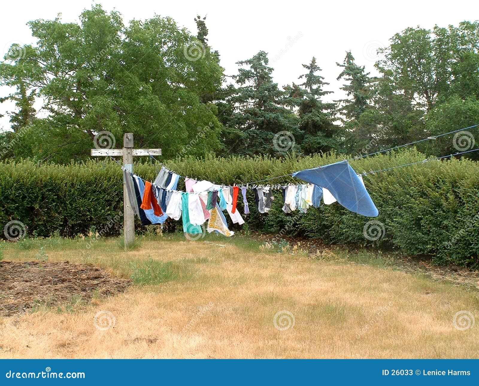 Wäscheleine auf dem Grasland
