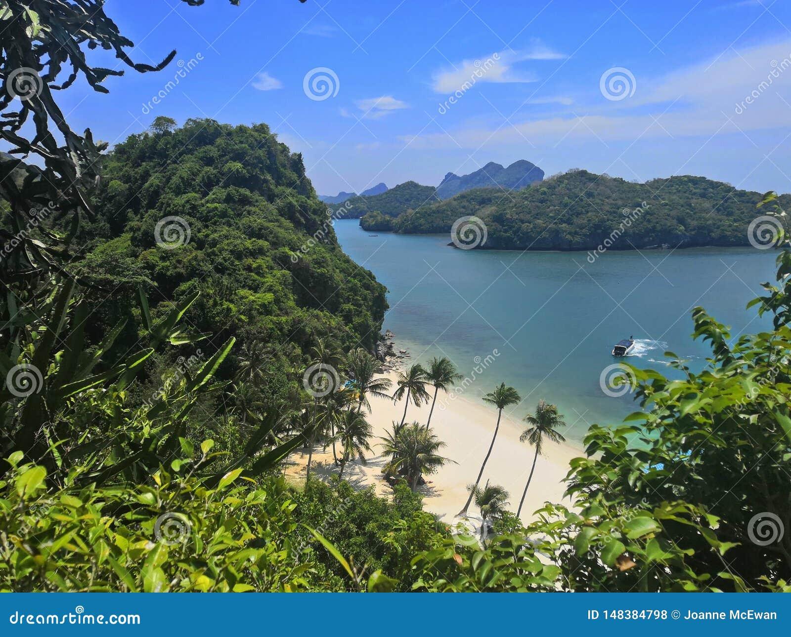 W?ssern tropische Palmen Insel-Thailand-KOH samui KOH madsom Strandes Seelandschaftsboots-Betriebsstandpunkt