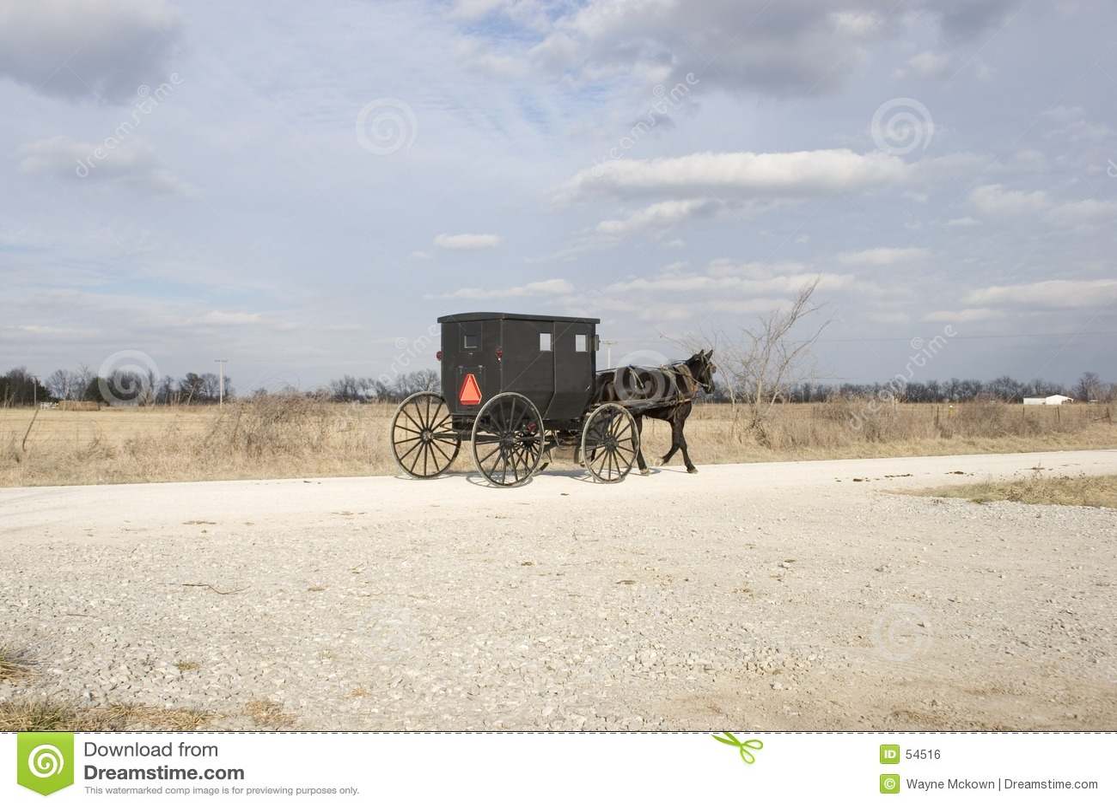 Wóz amisze wieś