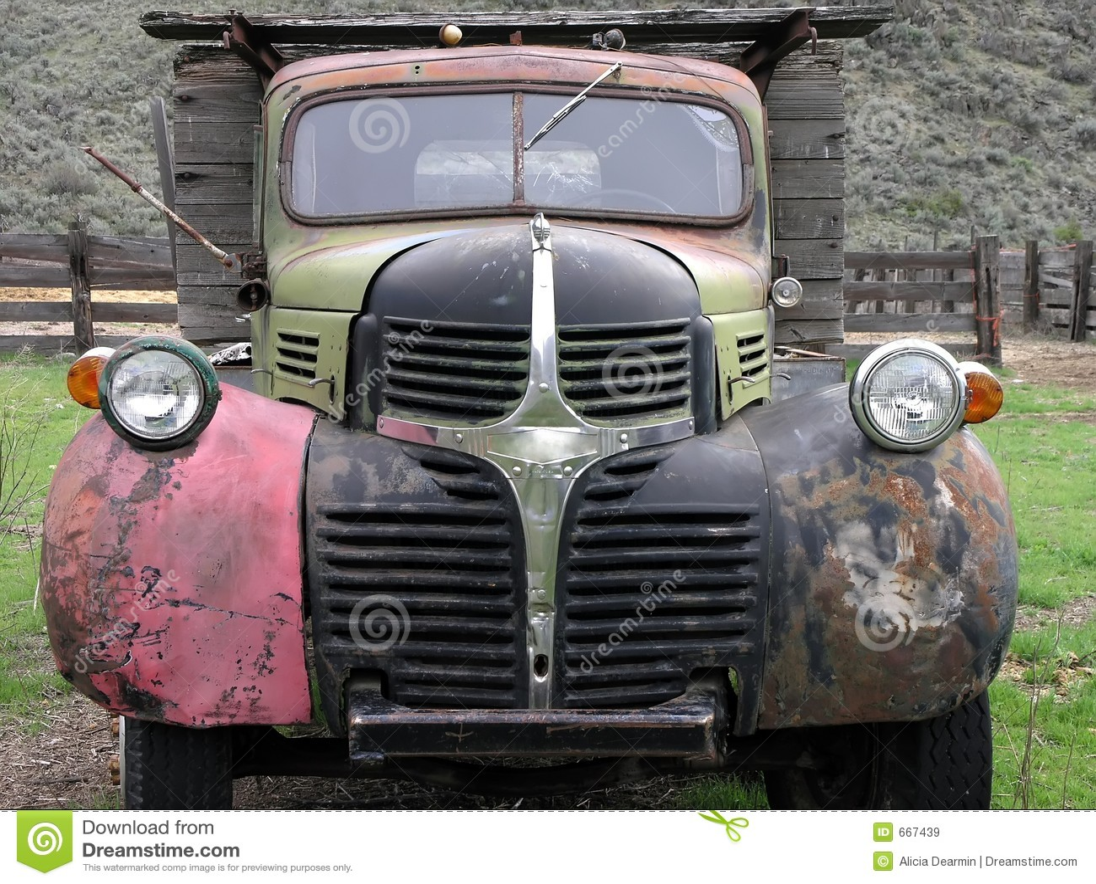 Wóz farbuje wielu