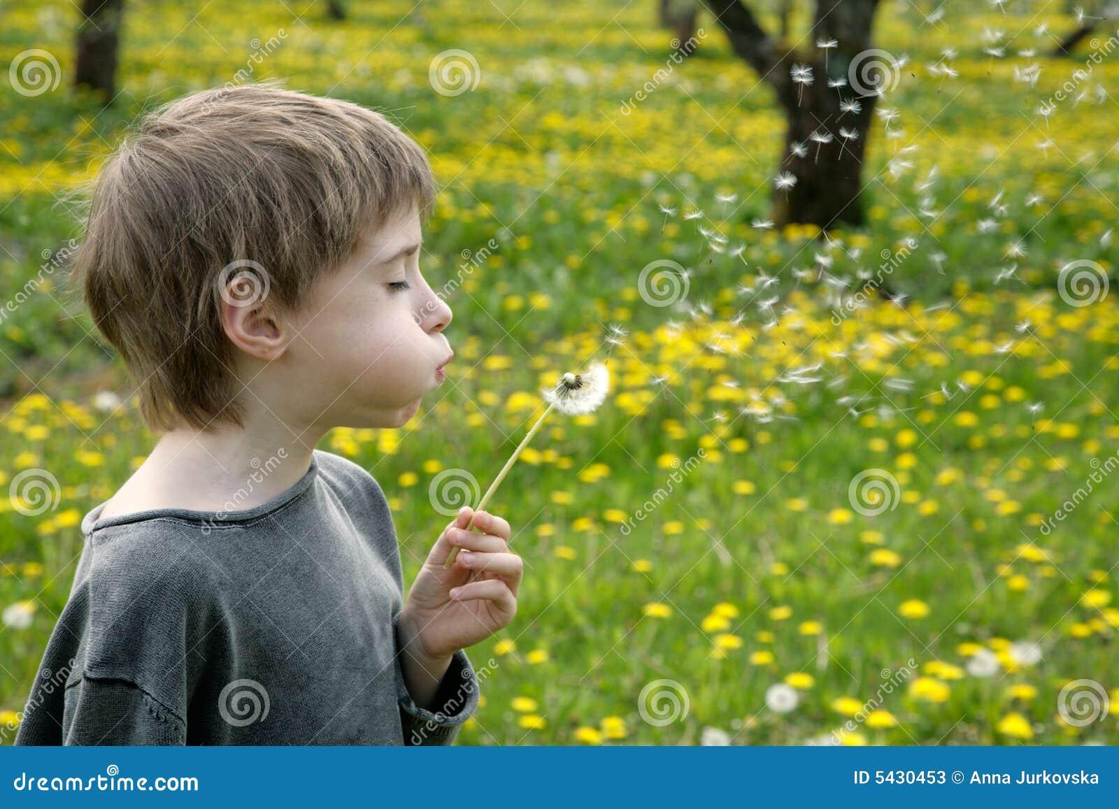 Wünsche des Kindes