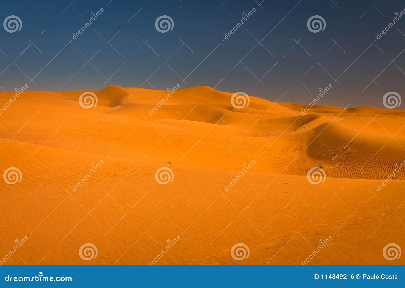 Wüstensonnenuntergangbelichtung nahe Dubai, Vereinigte Arabische Emirate