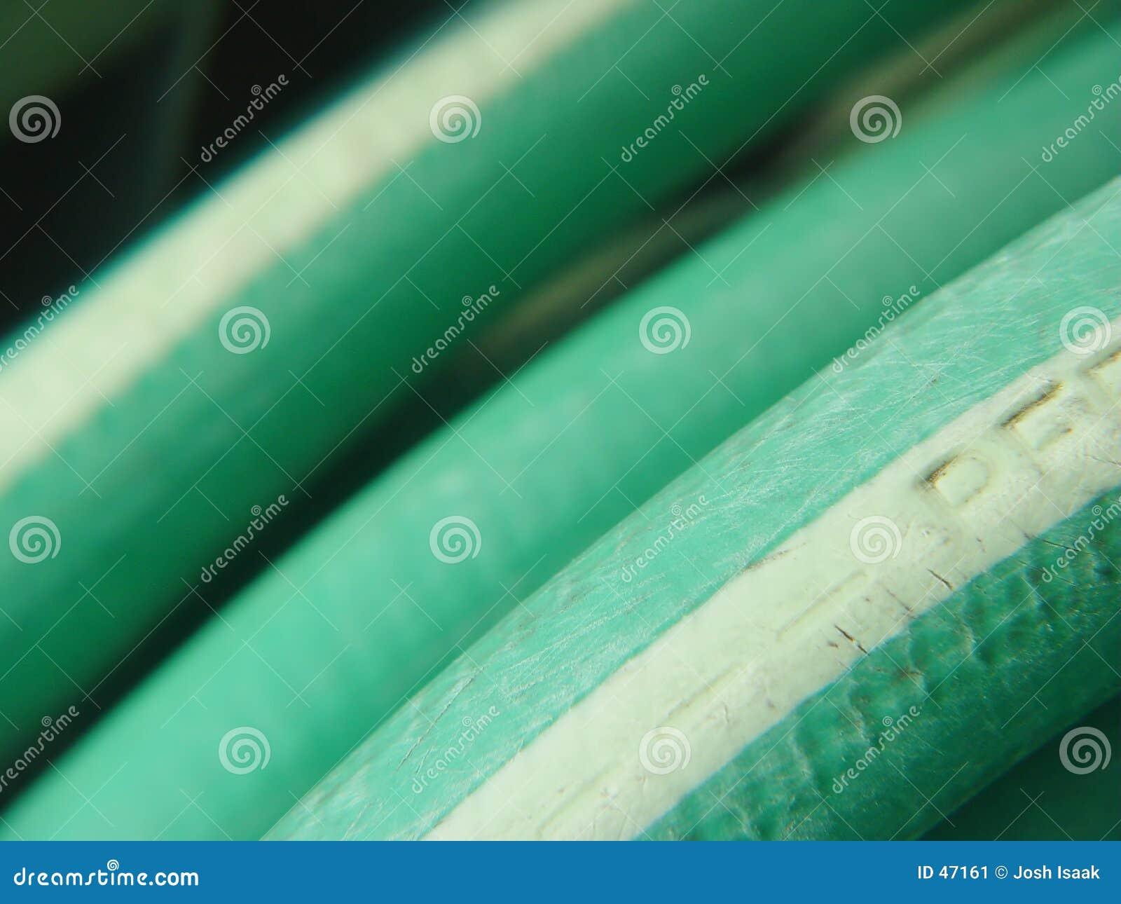 Wąż ogrodu