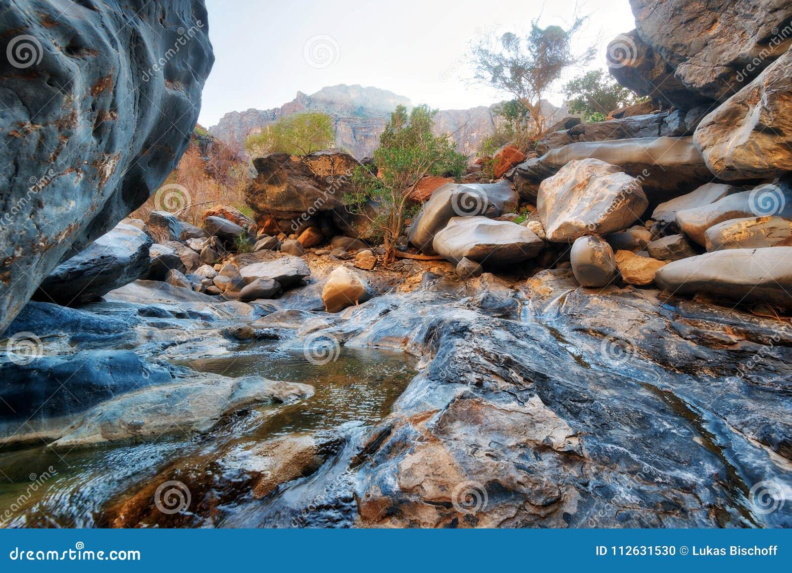 Węża wąwozu jar w Oman