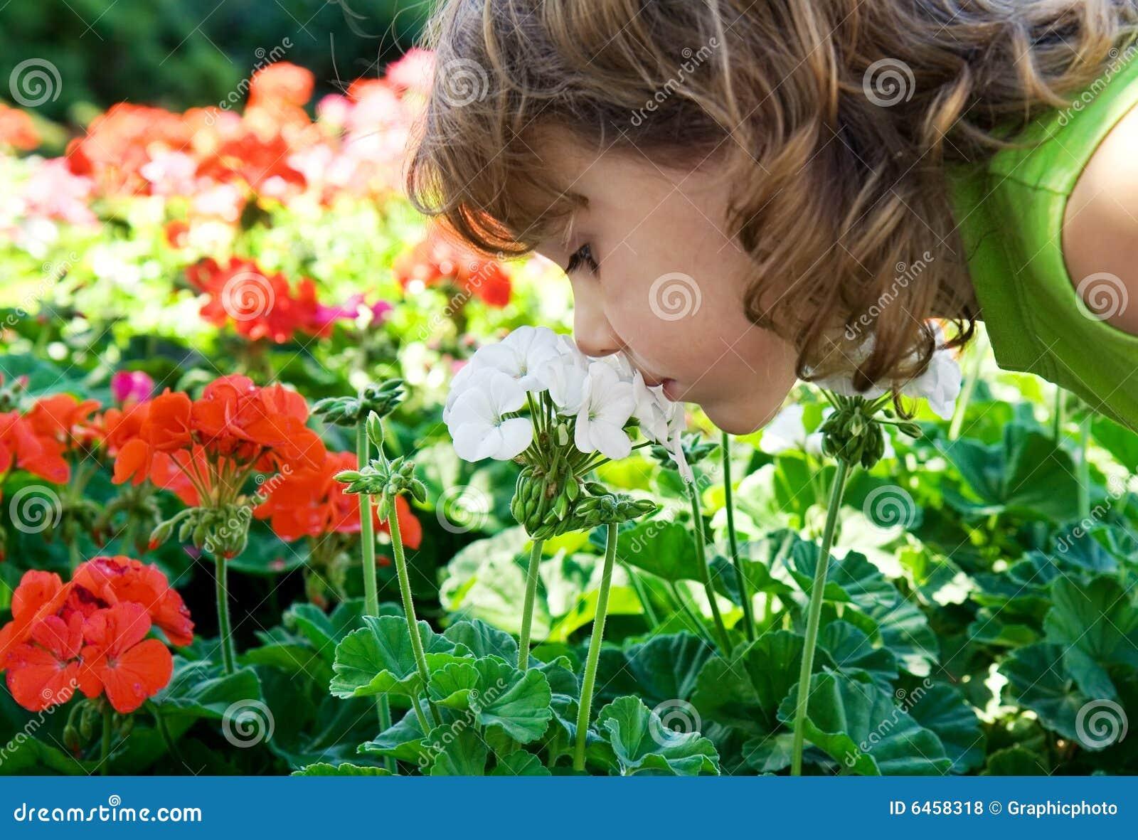 Węszyłeś kwiatów