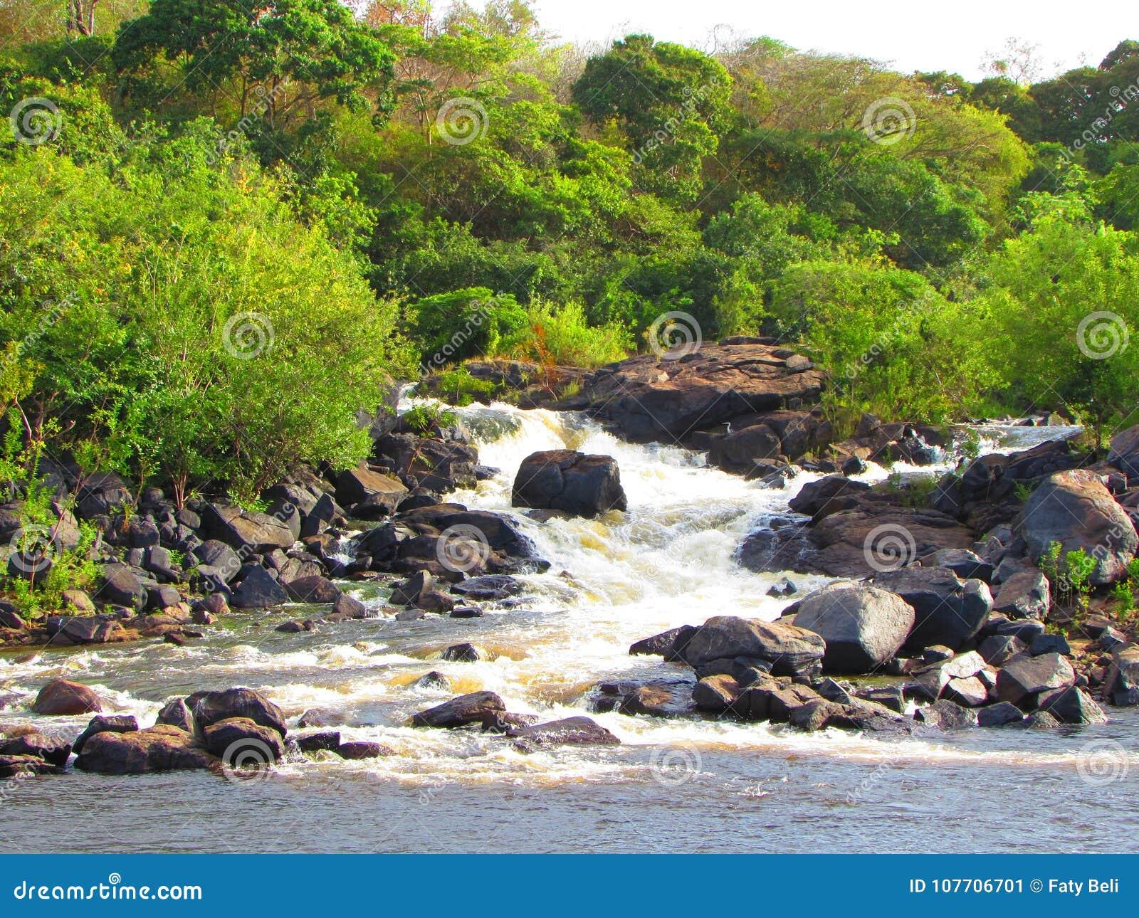Właśnie natura od Guayana