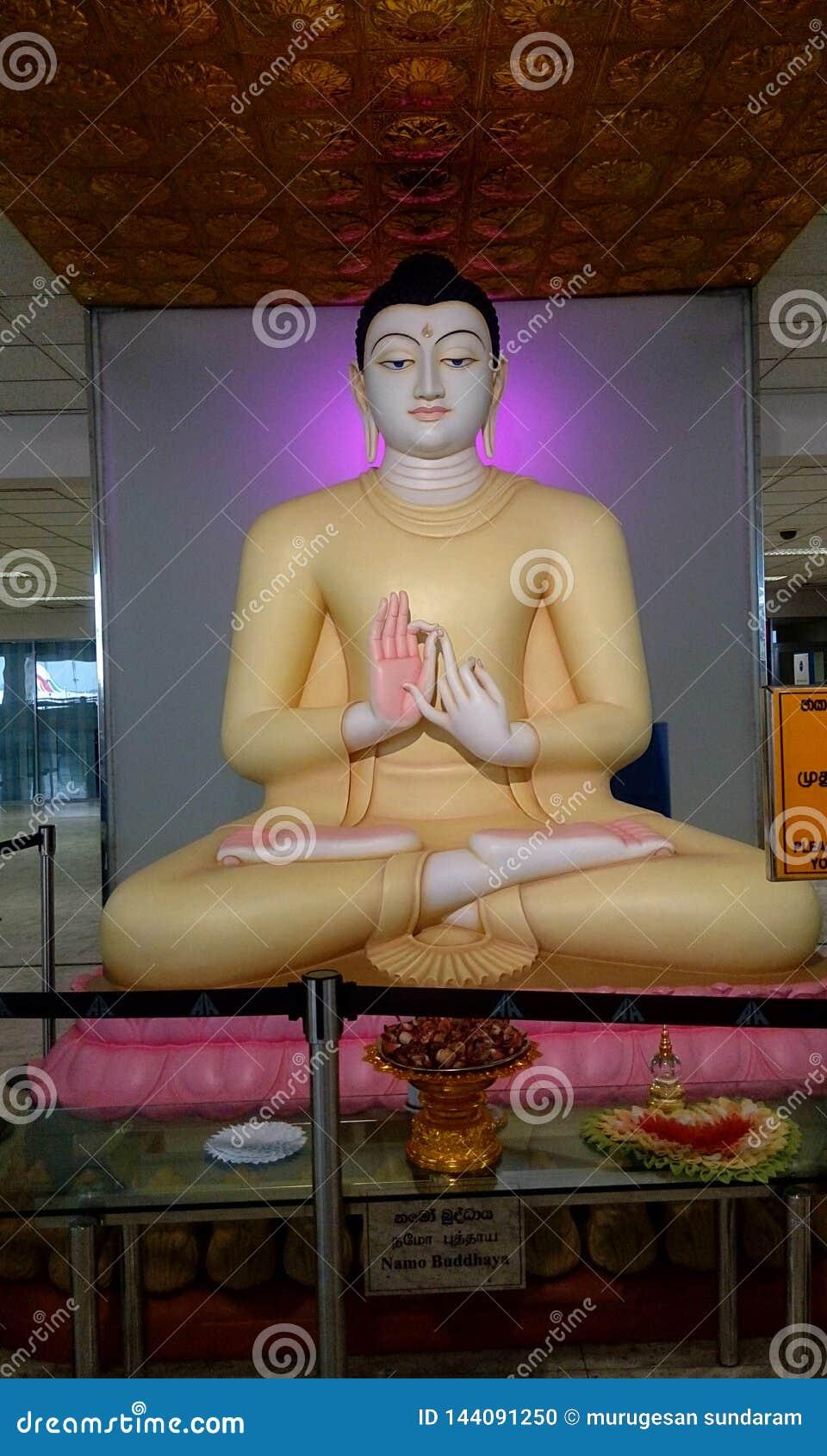 Władyki Buddha statua z sandała kolorem w lotniskowym Srilanka