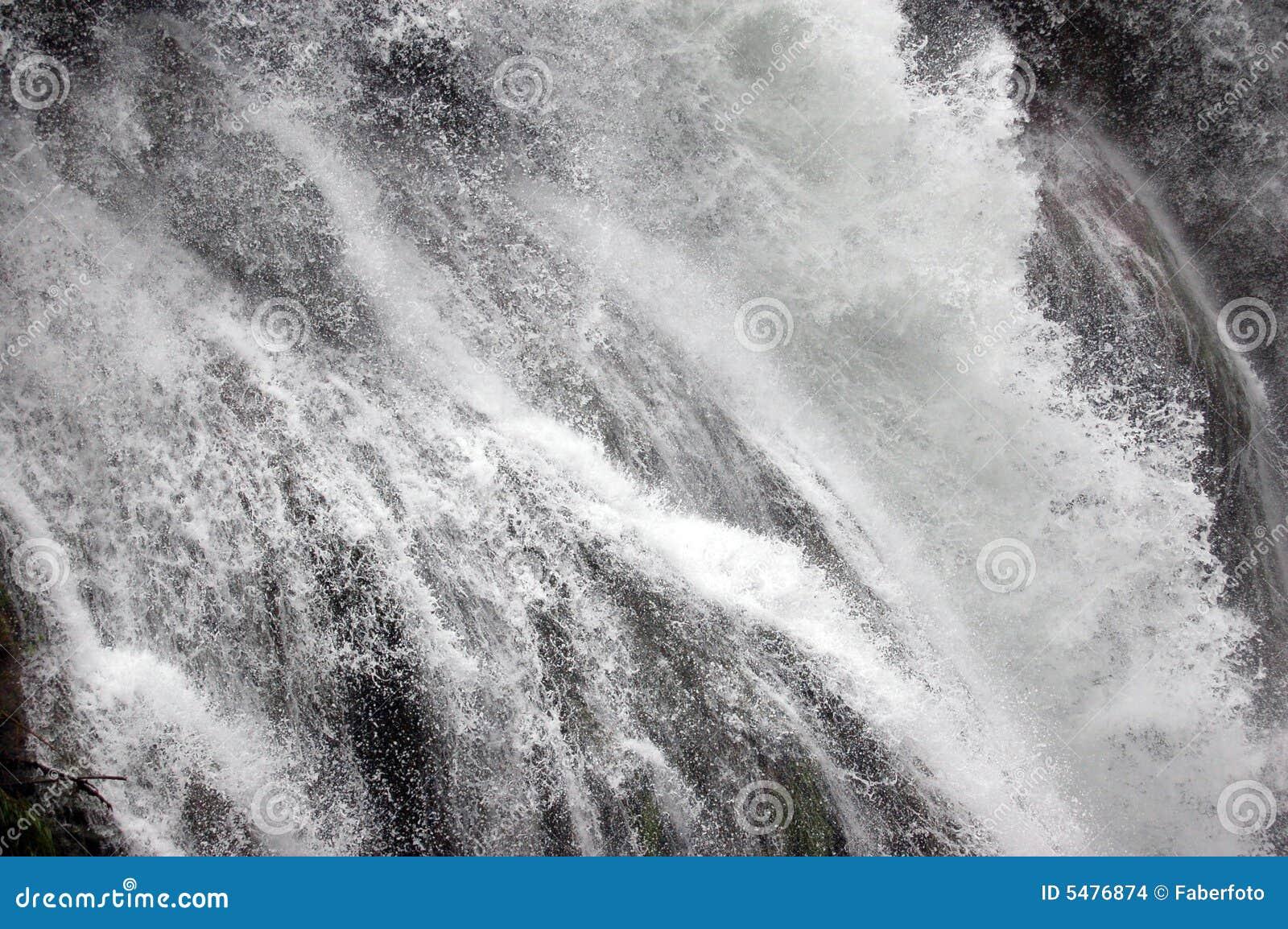 Władze wody