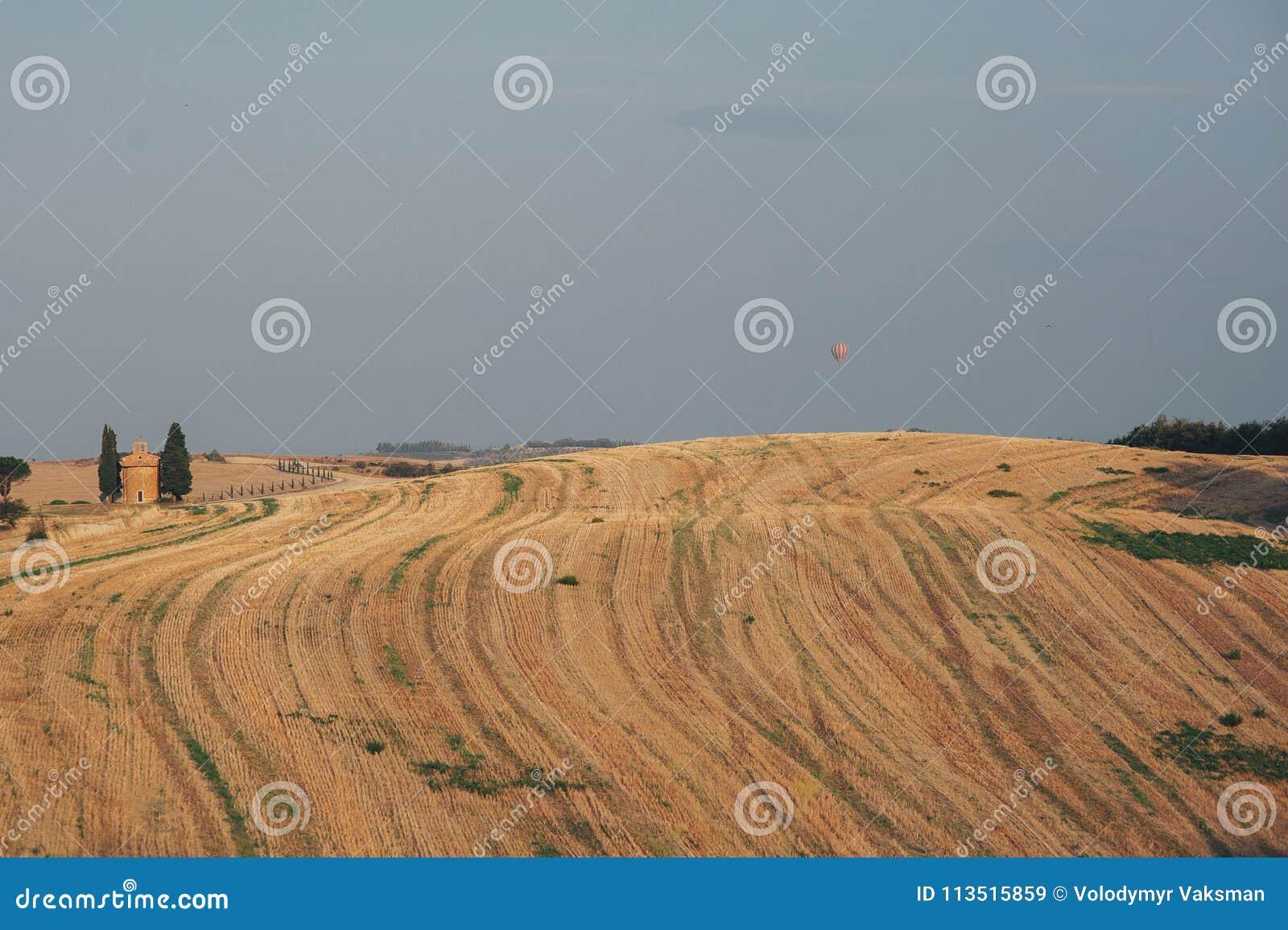 Włoscy cyprysowych drzew rzędy i biały drogowy wiejski krajobraz Sie
