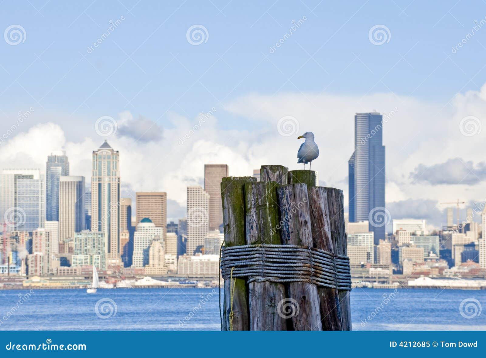 W środku Seattle