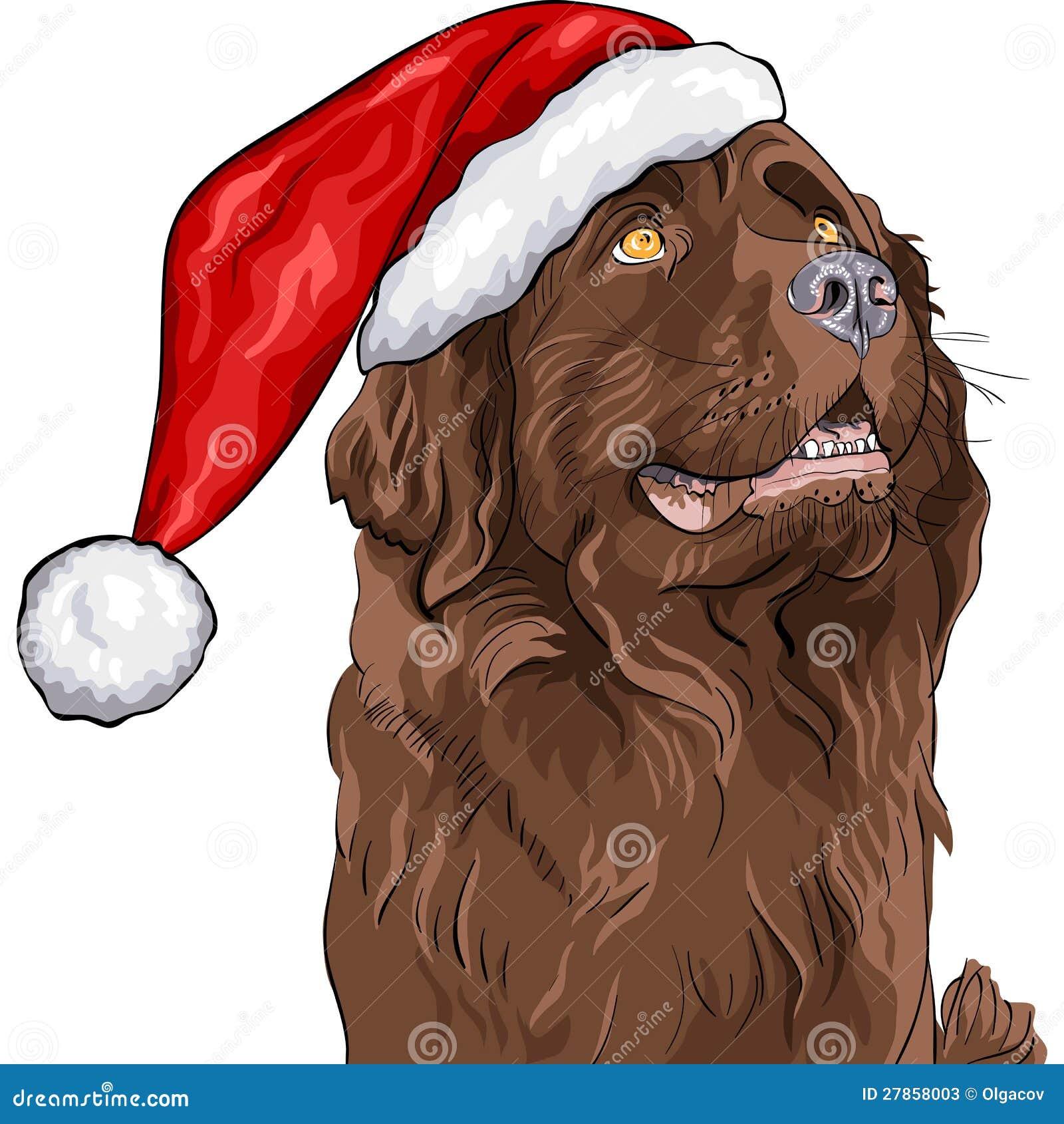 W Święty Mikołaj kapeluszu psia Niemiecka baca