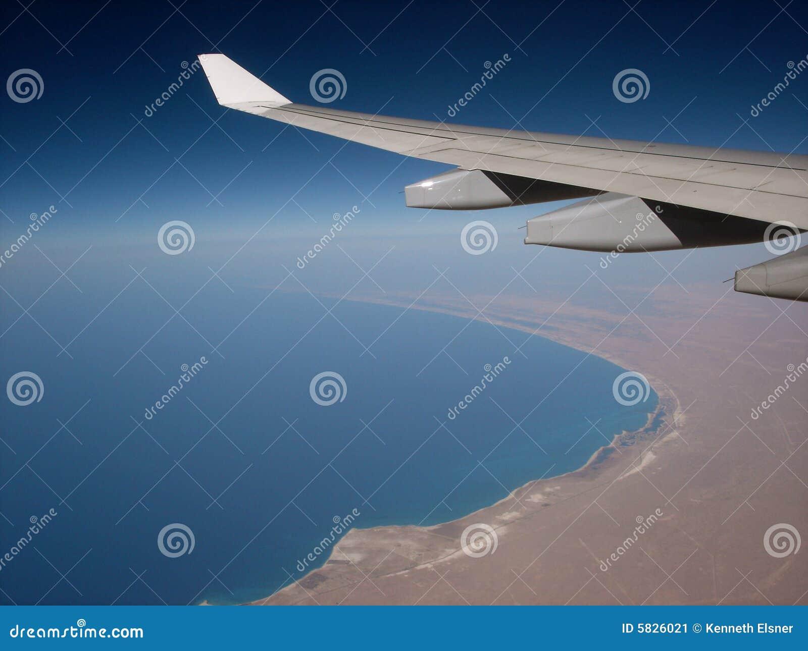 W afryce skrzydła