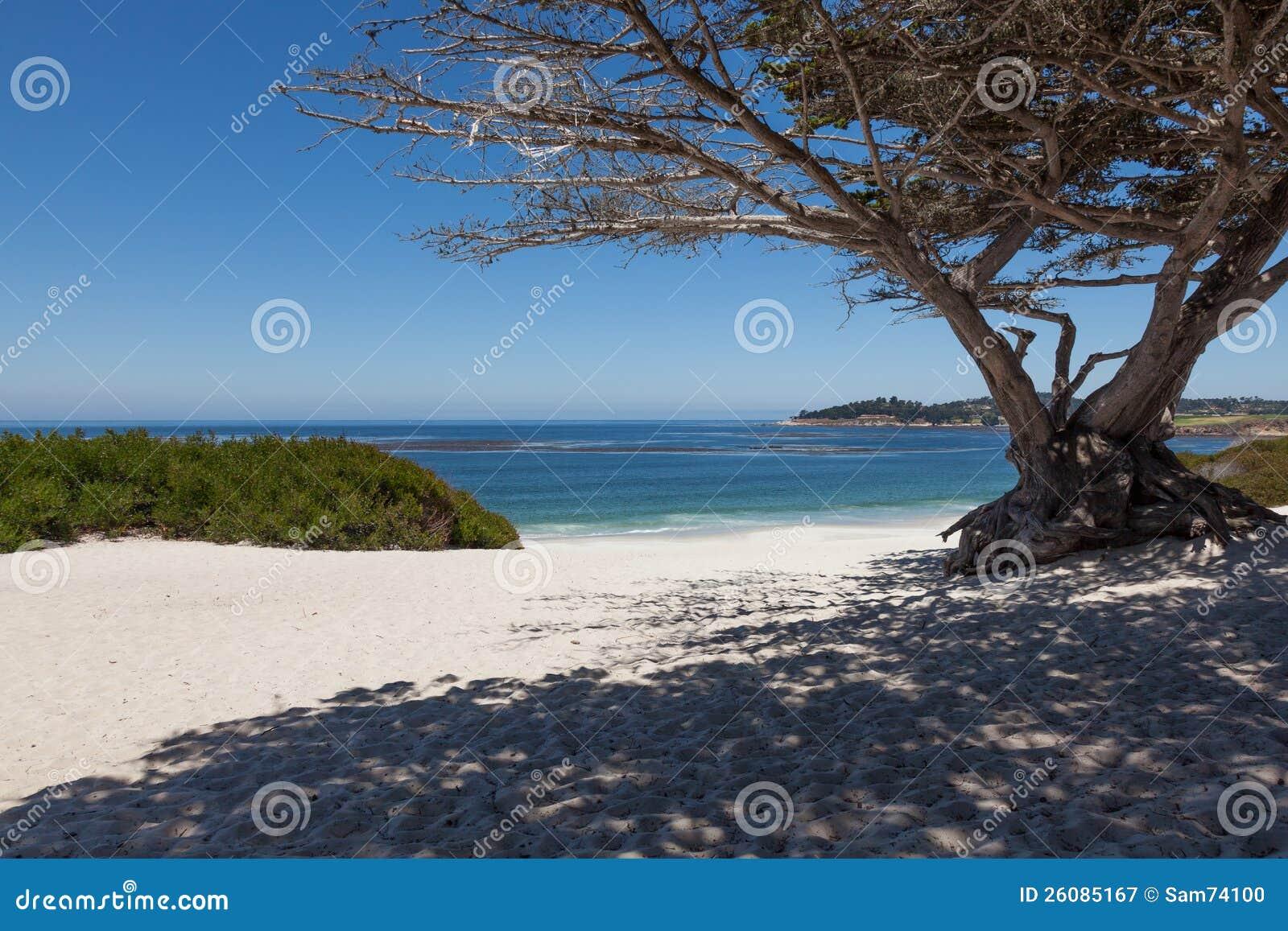 W Carmel plaża, Kalifornia