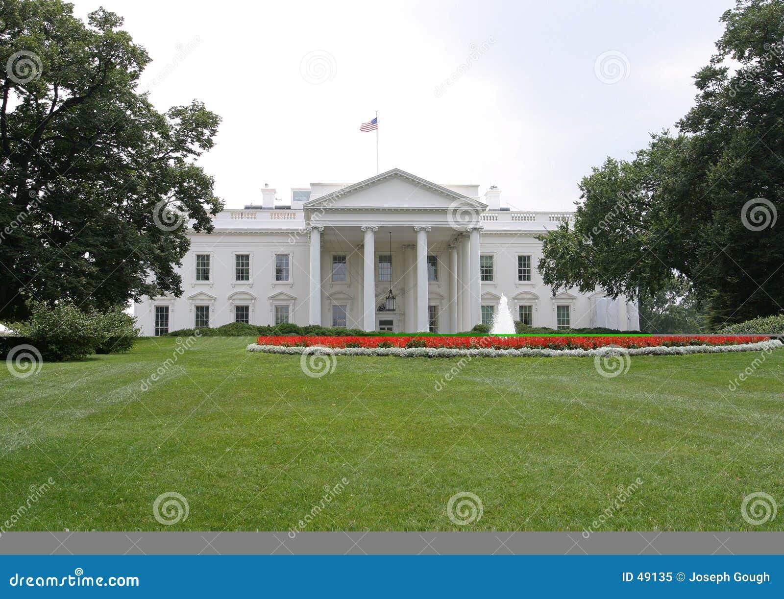 W domu przednia Washington white
