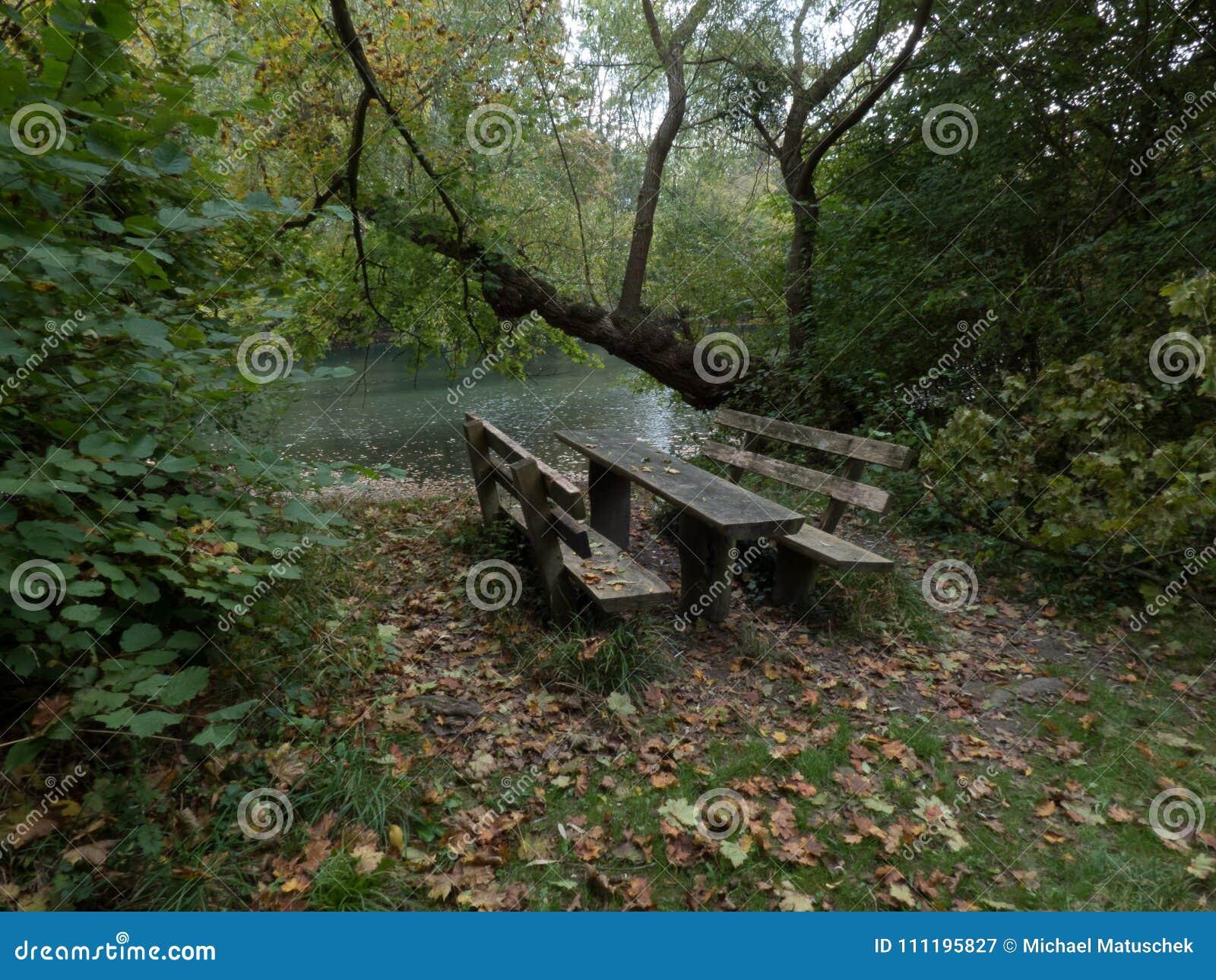 W drewnach drewniana ławka